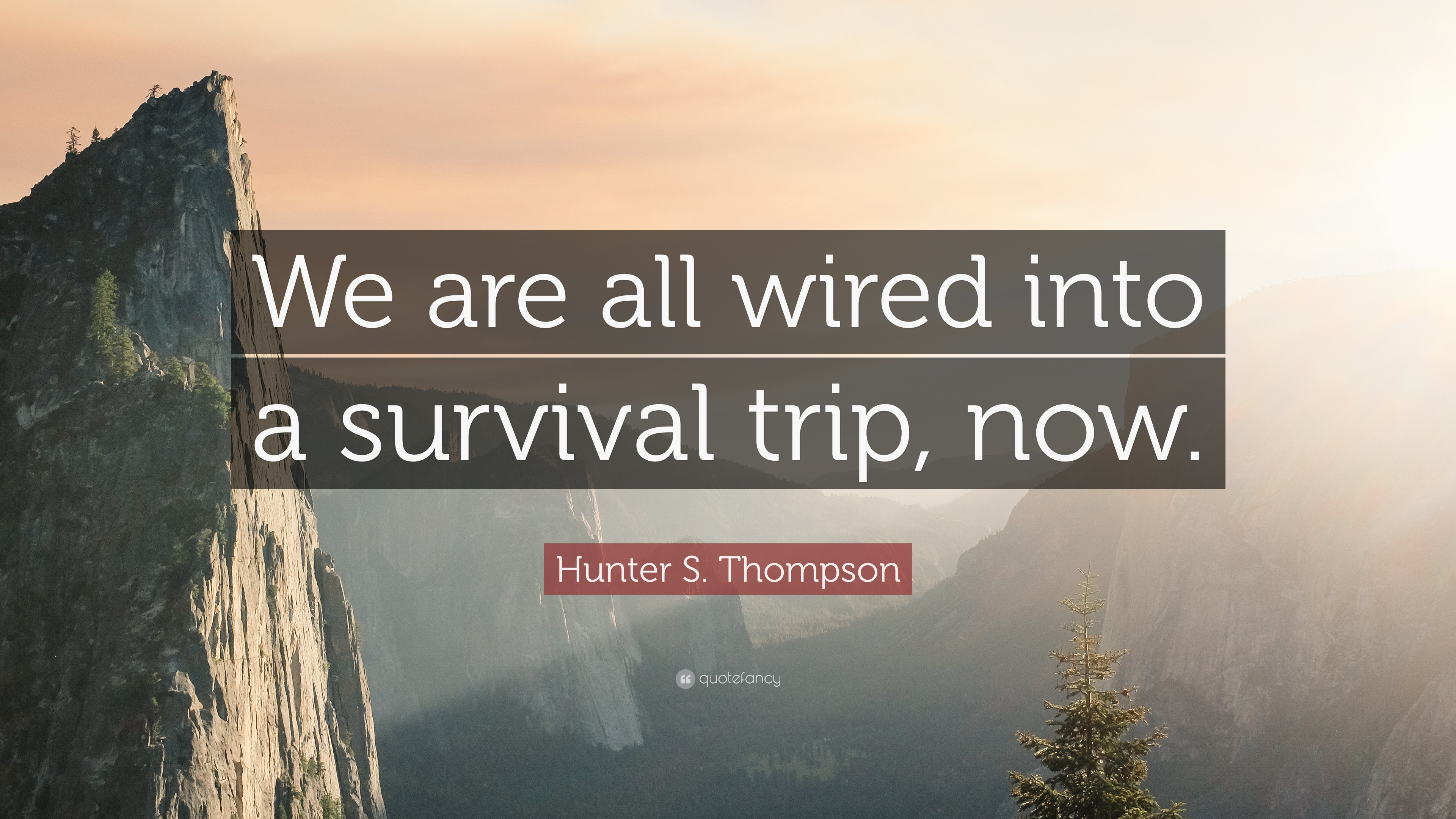 """Hunter S. Thompson Quote: """"We are all wired into a survival trip ..."""