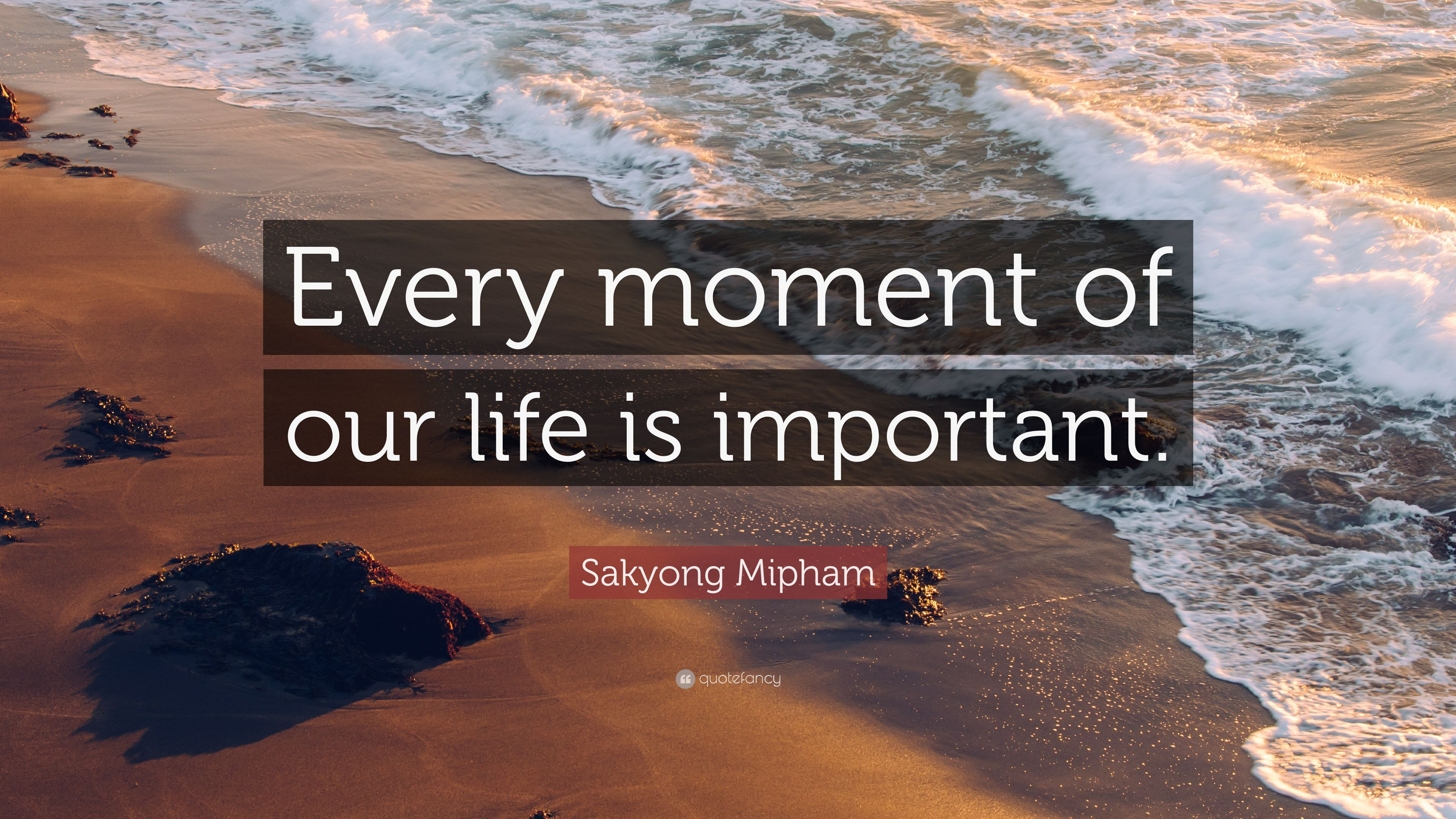 importance of sea in our life