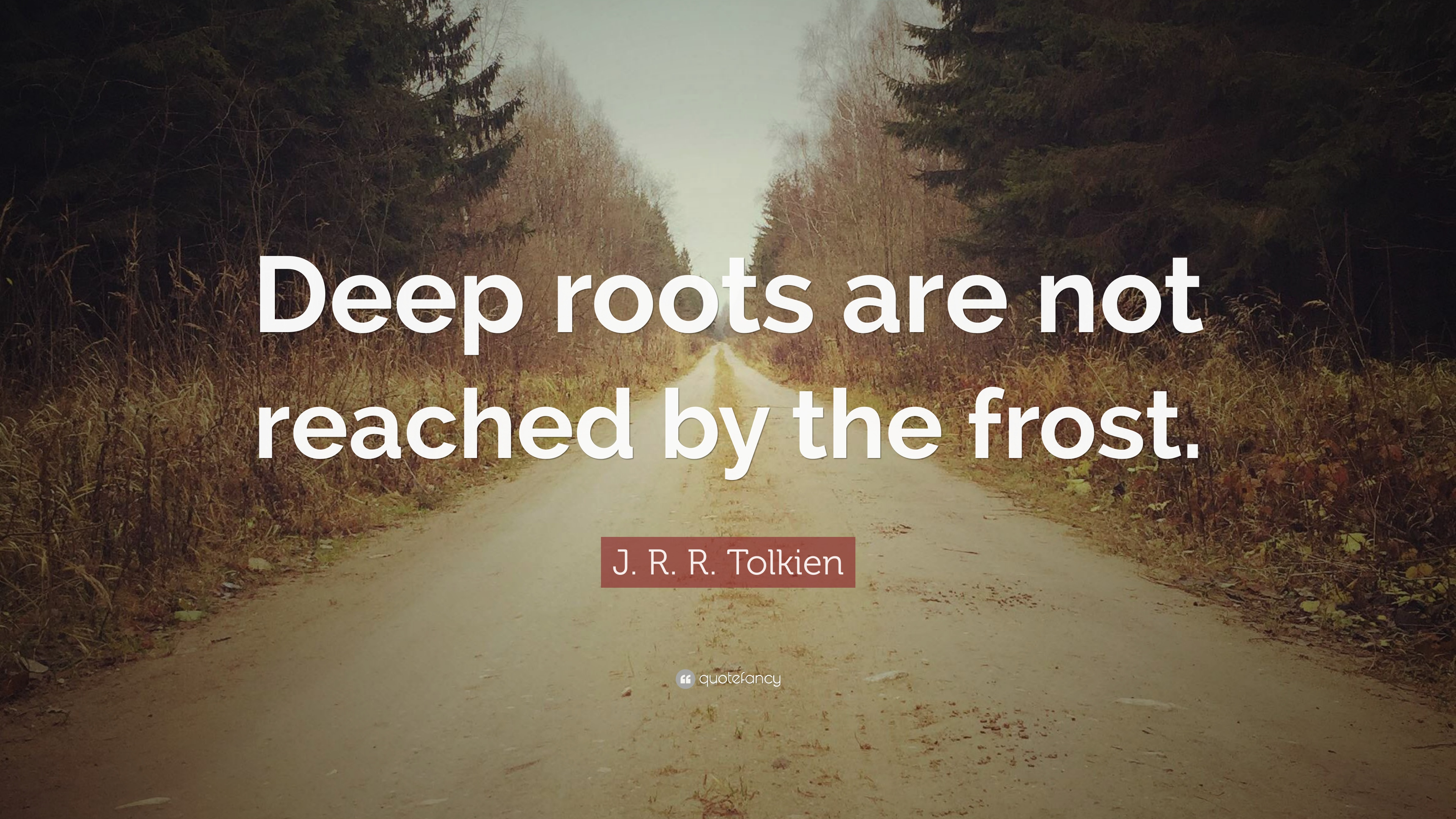 """Risultati immagini per """"Deep roots are not reached by the frost."""""""