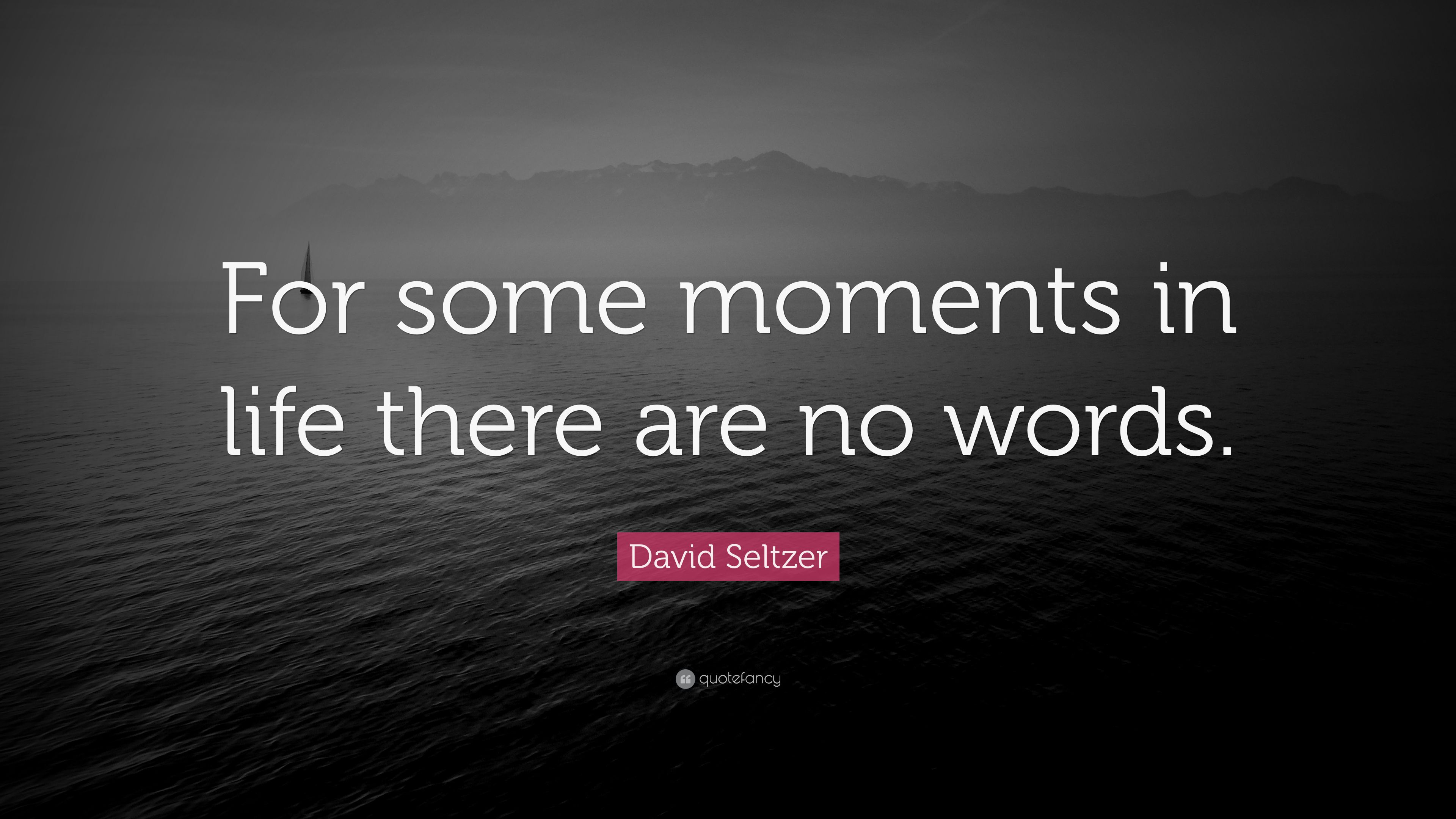 David Seltzer Quote For Some Moments In Life There Are No Words