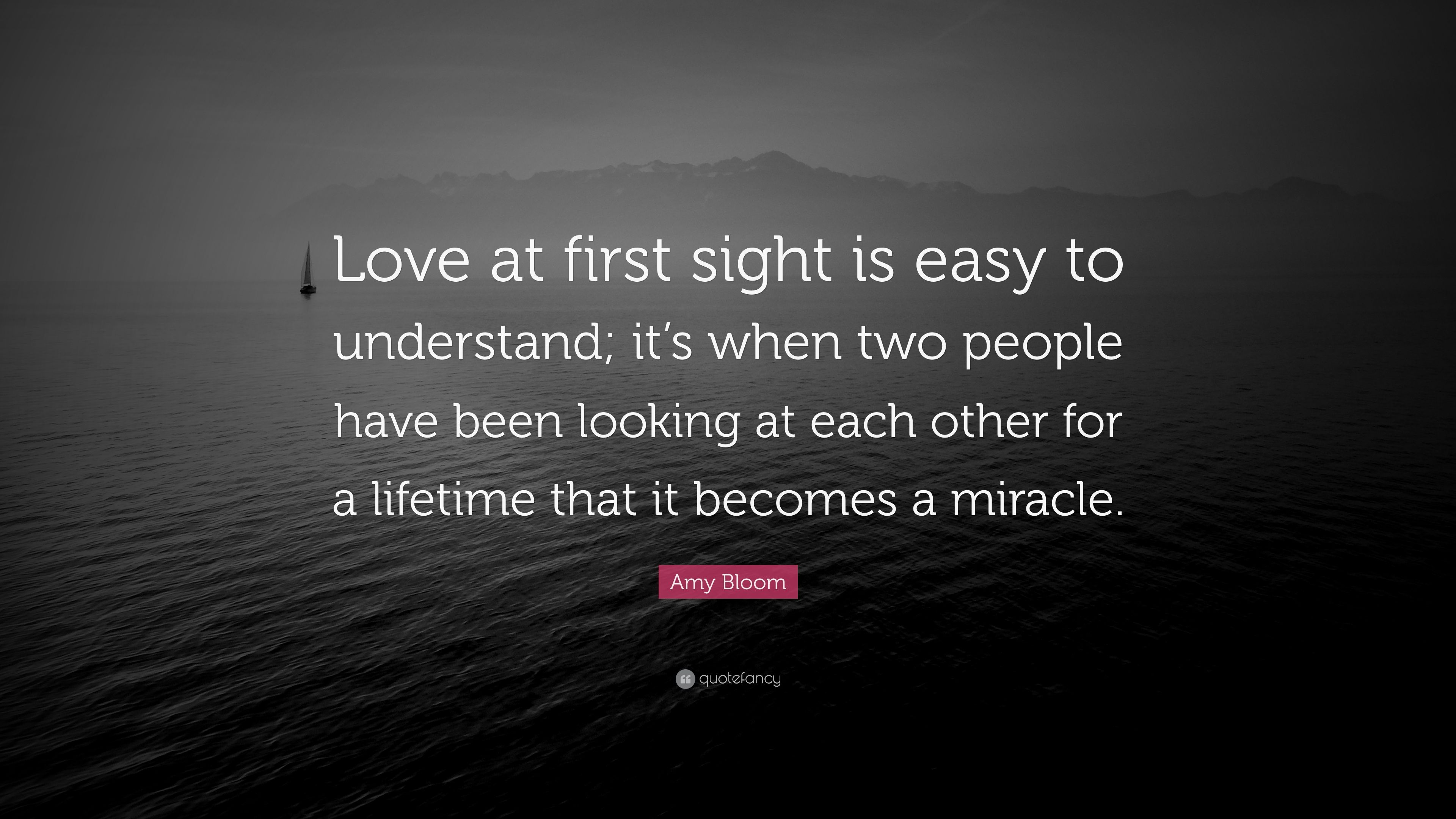 "Quotes About Love At First Site Prepossessing Amy Bloom Quote ""Love At First Sight Is Easy To Understand It's"