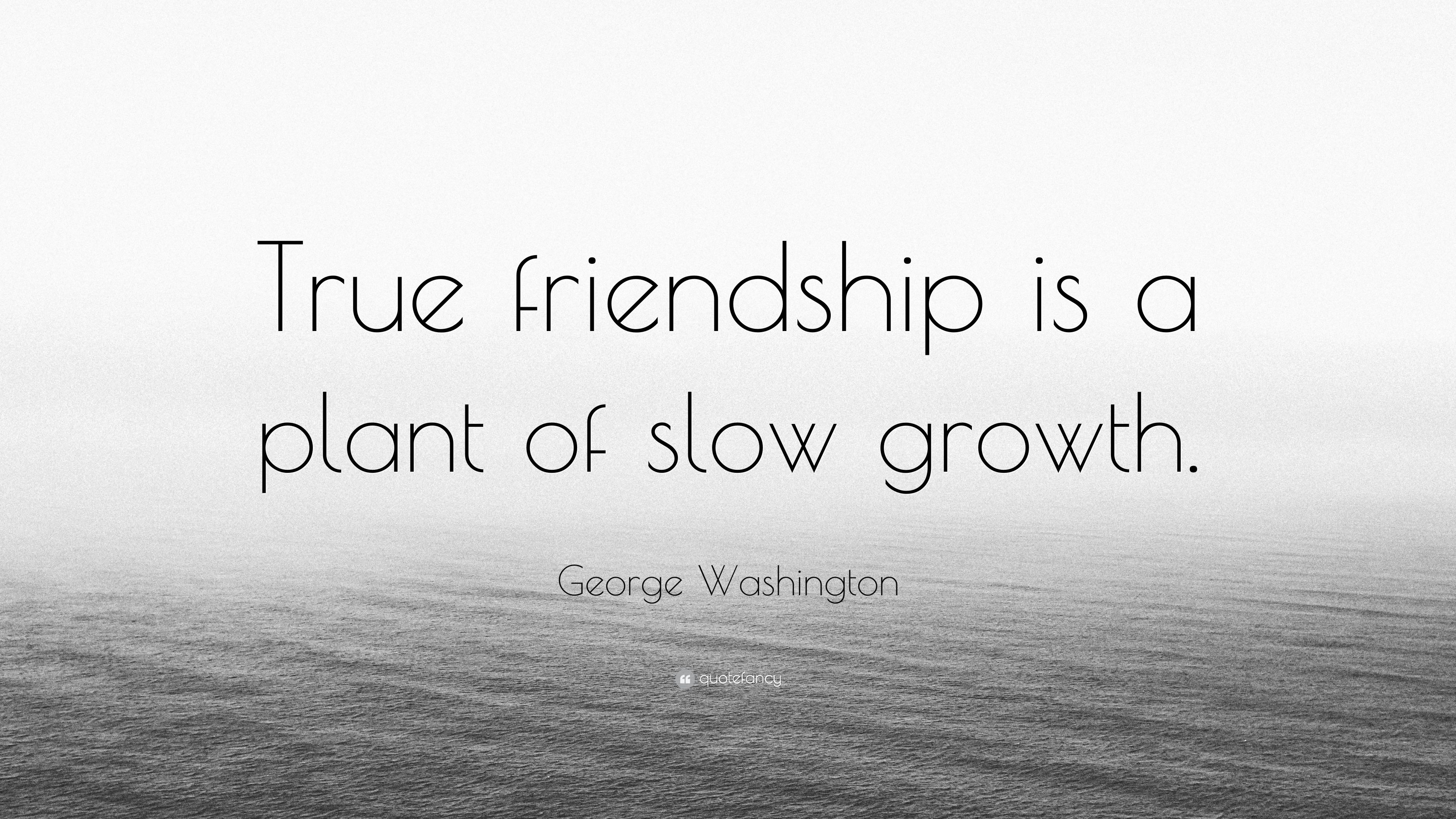 "Quote About True Friendship George Washington Quote ""True Friendship Is A Plant Of Slow"