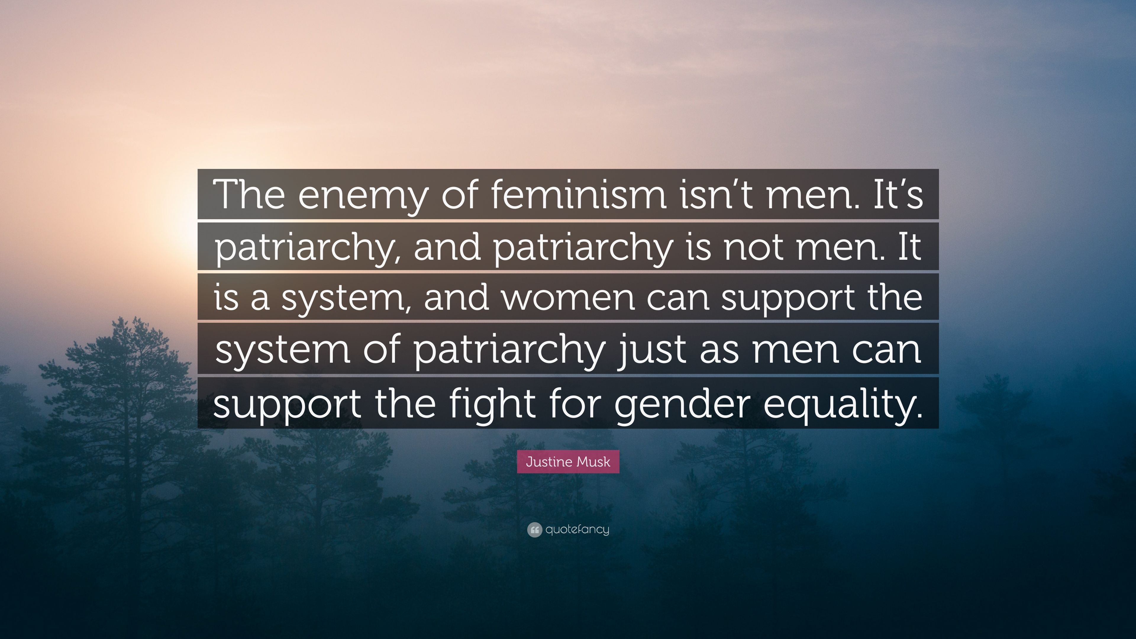 patriarchy and the system Hello all, i study philosophy of systems and i am trying to analyse how the patriarchy is a system a system, by definition takes in an input.