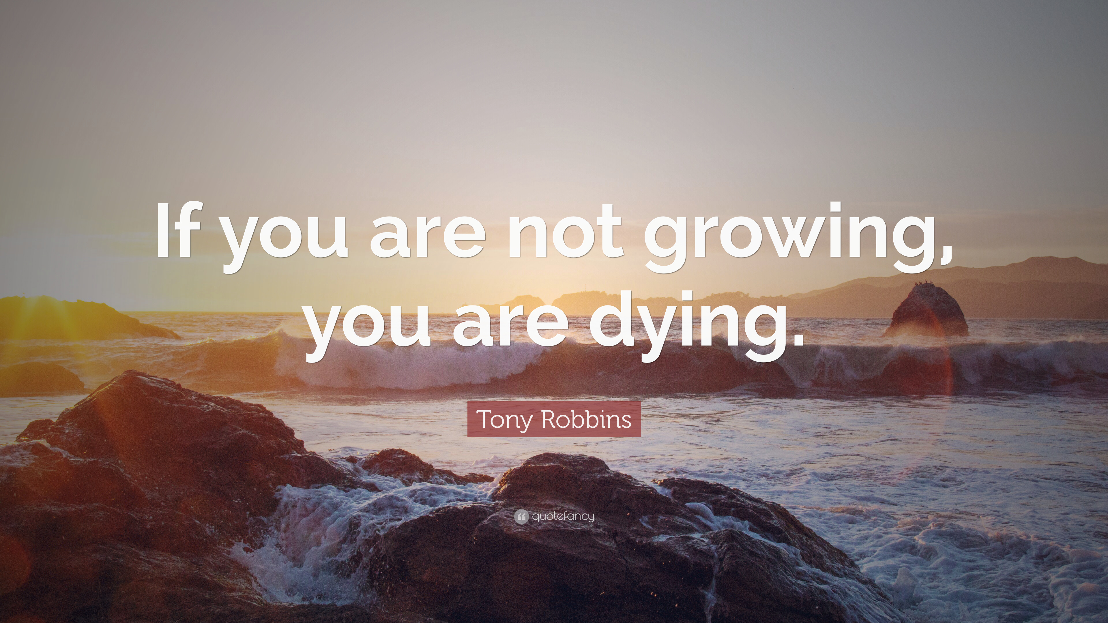 Tony Robbins Quote If You Are Not Growing You Are Dying 9