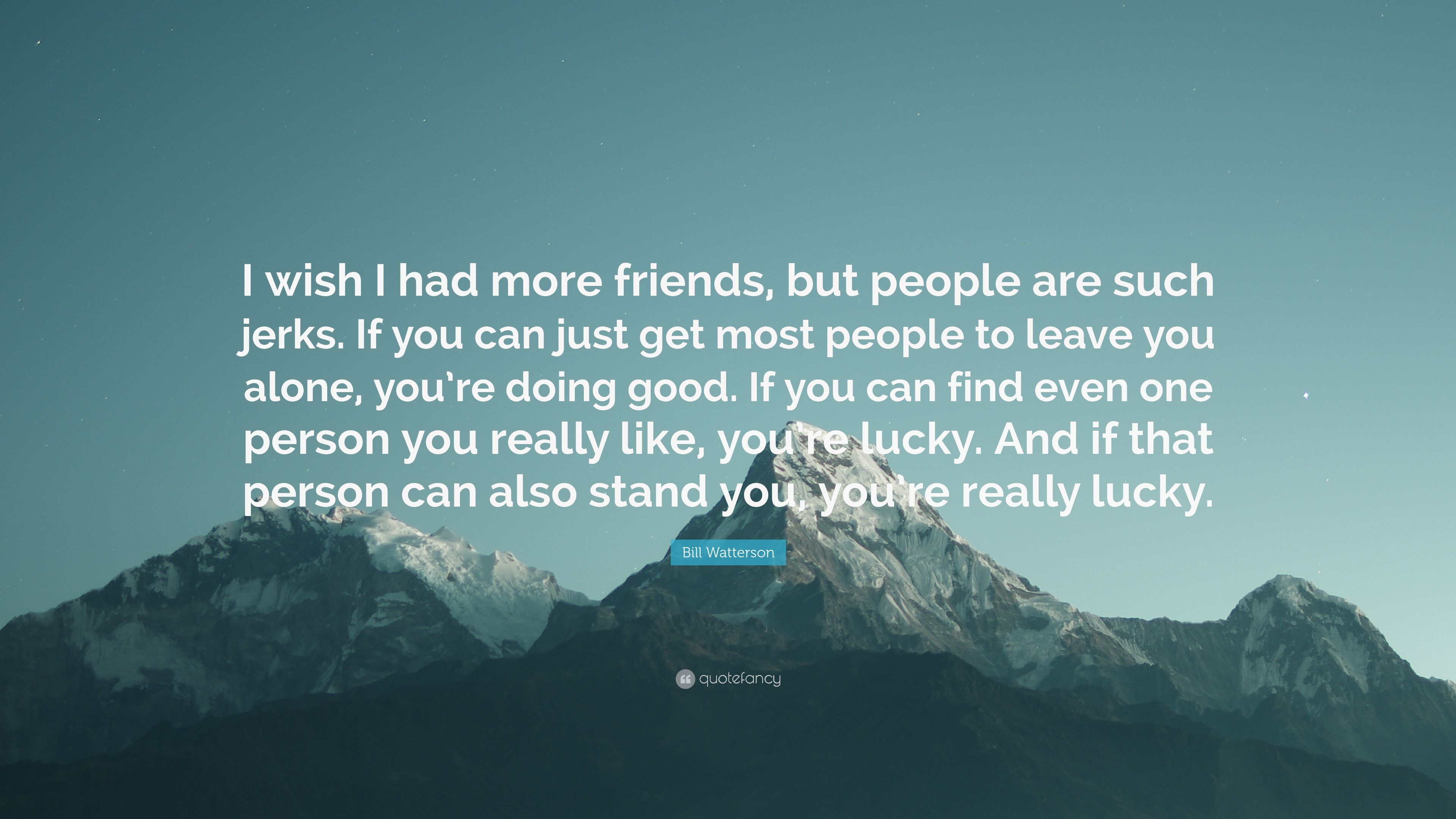 bill watterson quote i wish i had more friends but people are