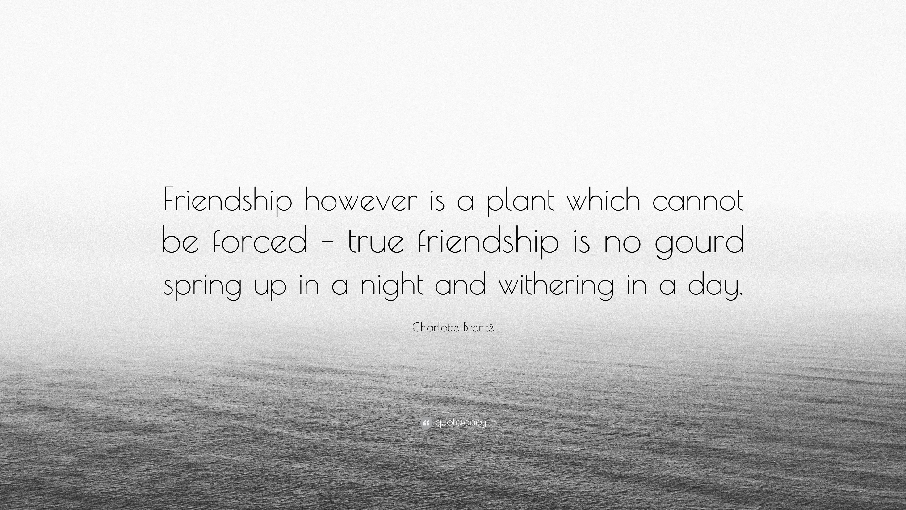 "Quote About True Friendship Charlotte Brontë Quote ""Friendship However Is A Plant Which"