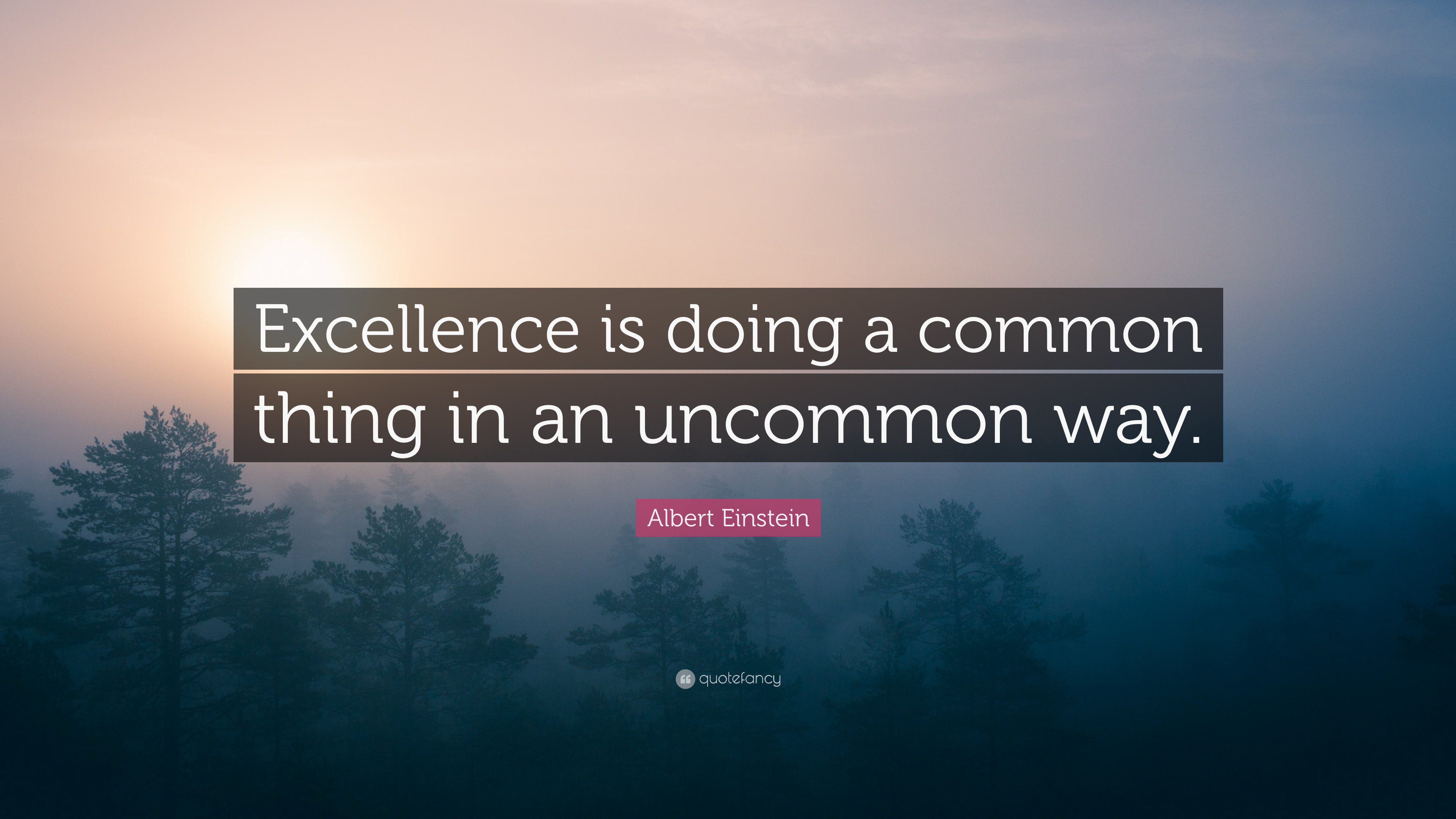 "Albert Einstein Quote: ""Excellence is doing a common thing ..."