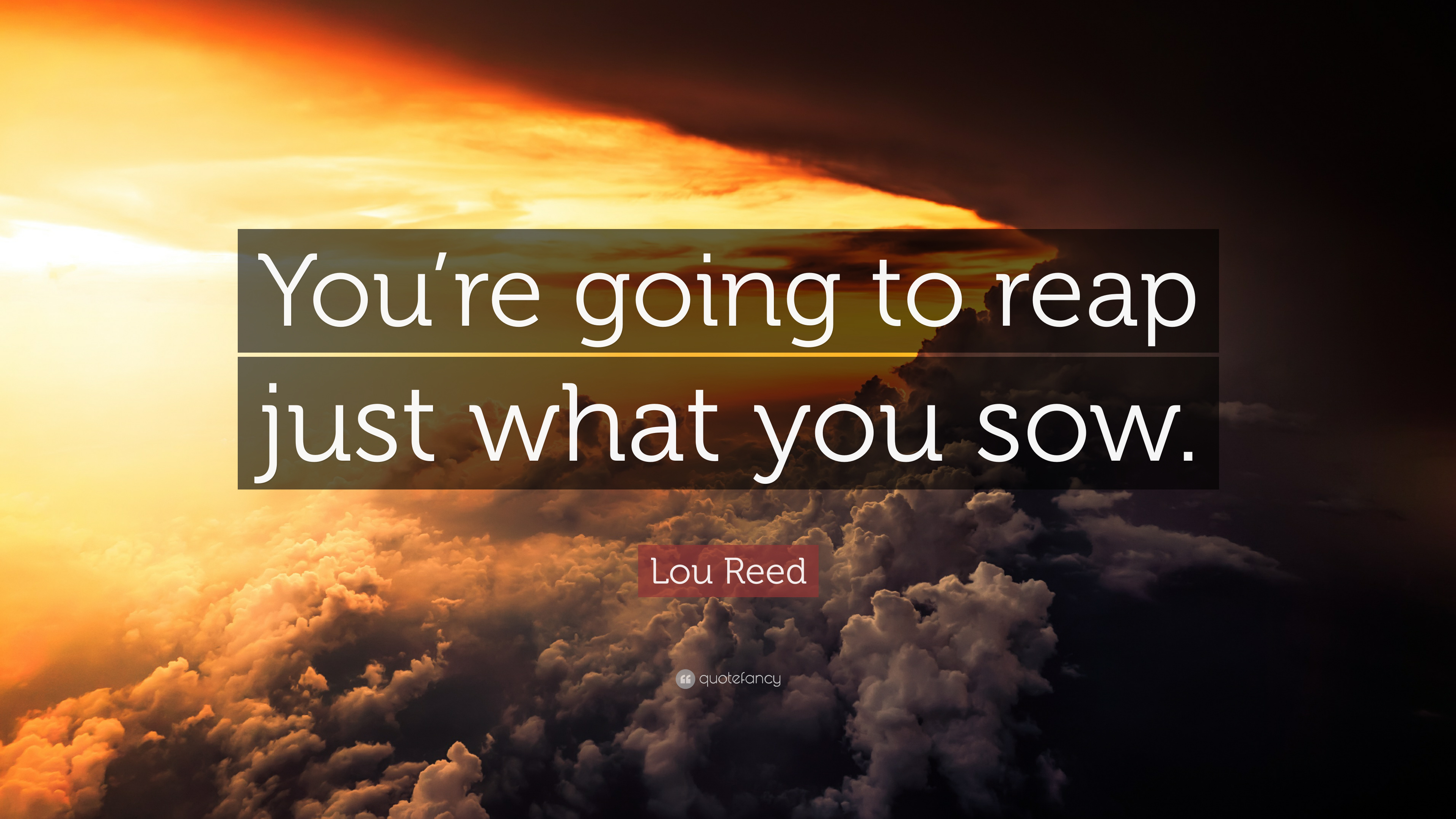 Lou Reed Quote: Youre going to reap just what you sow