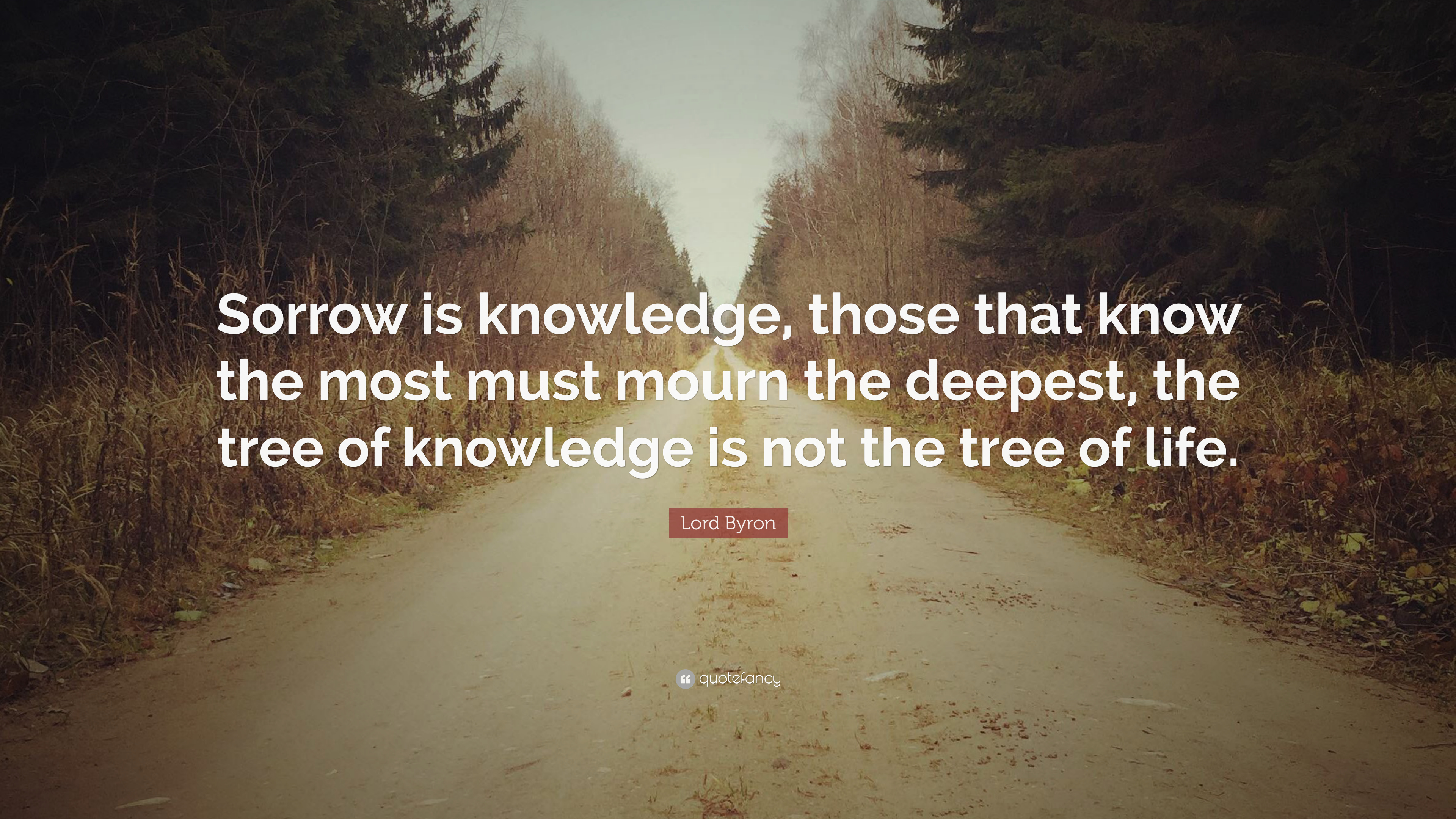 """Lord Byron Quote: """"Sorrow Is Knowledge, Those That Know"""