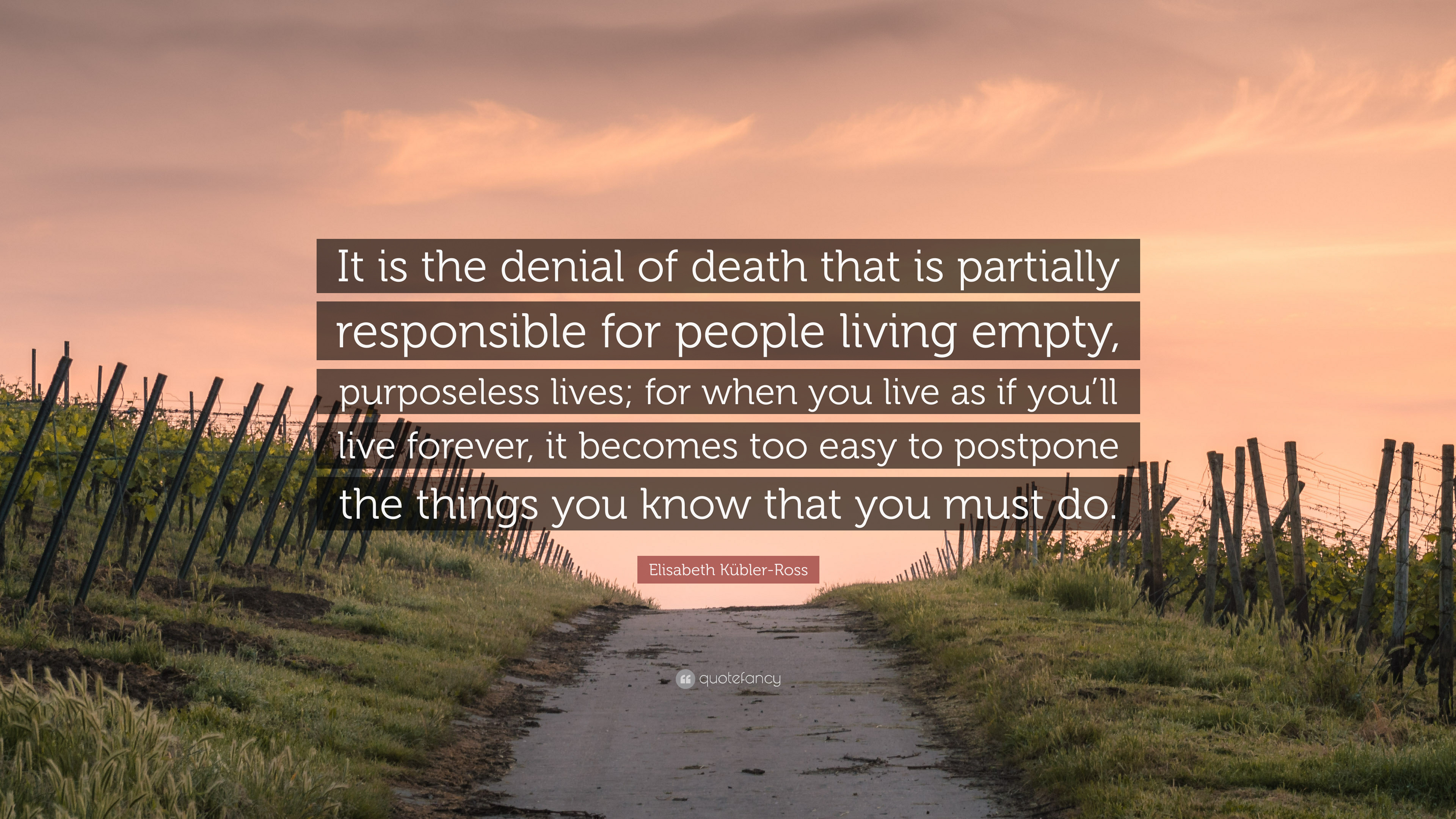 Elisabeth Kübler Ross Quote It Is The Denial Of Death That Is