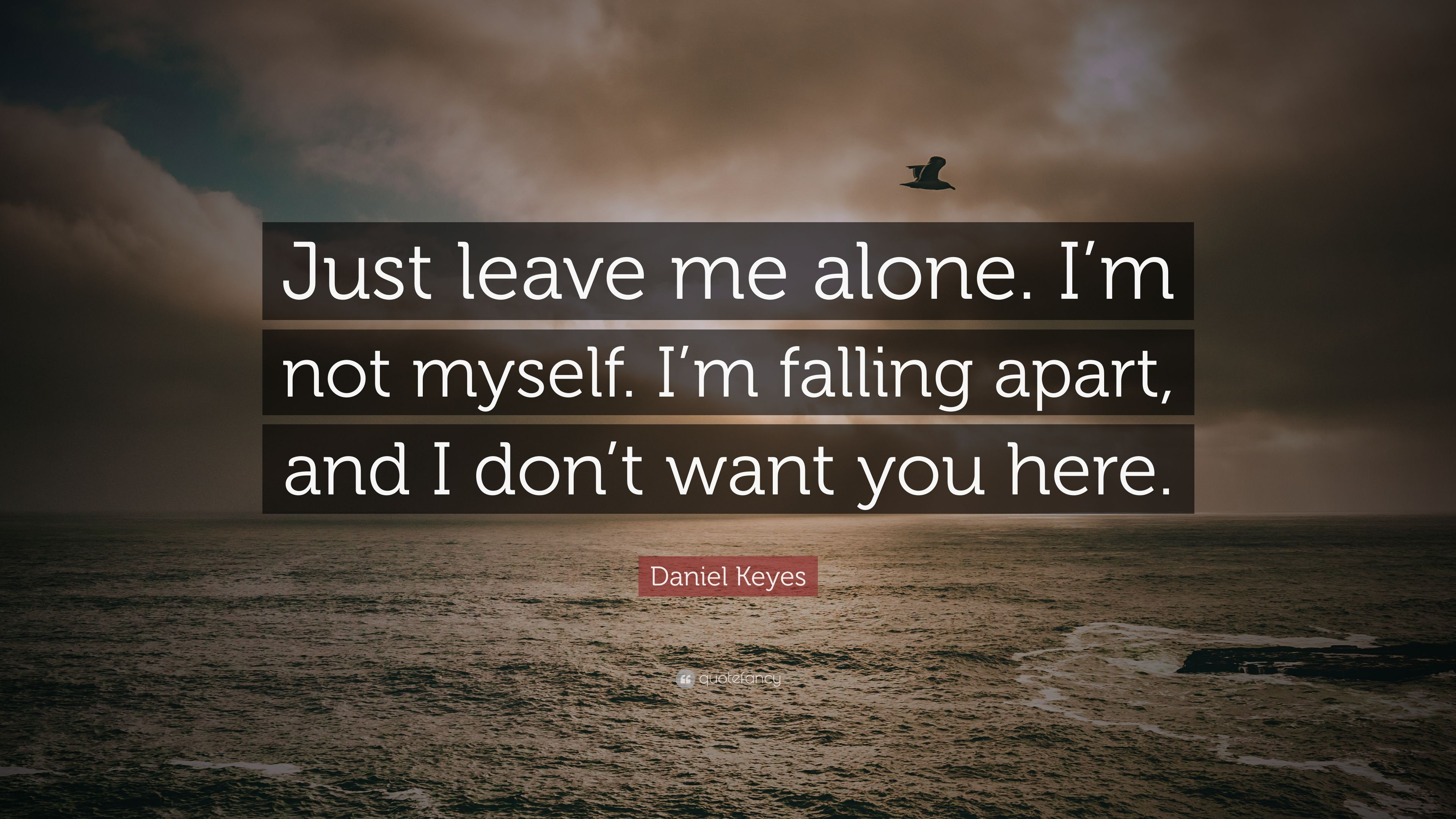 "Daniel Keyes Quote: ""Just Leave Me Alone. I'm Not Myself"