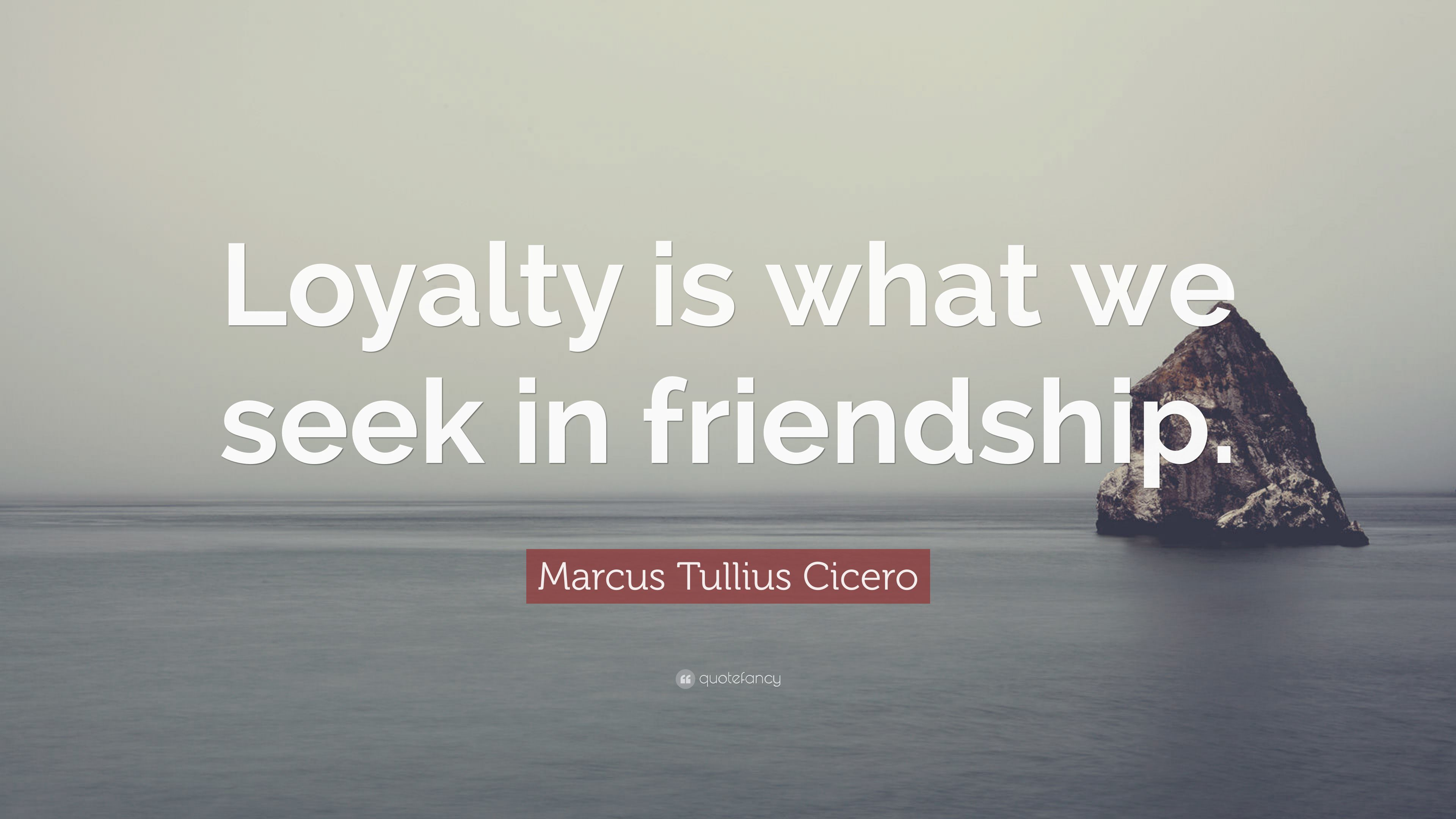 an analysis of friendship and loyalty