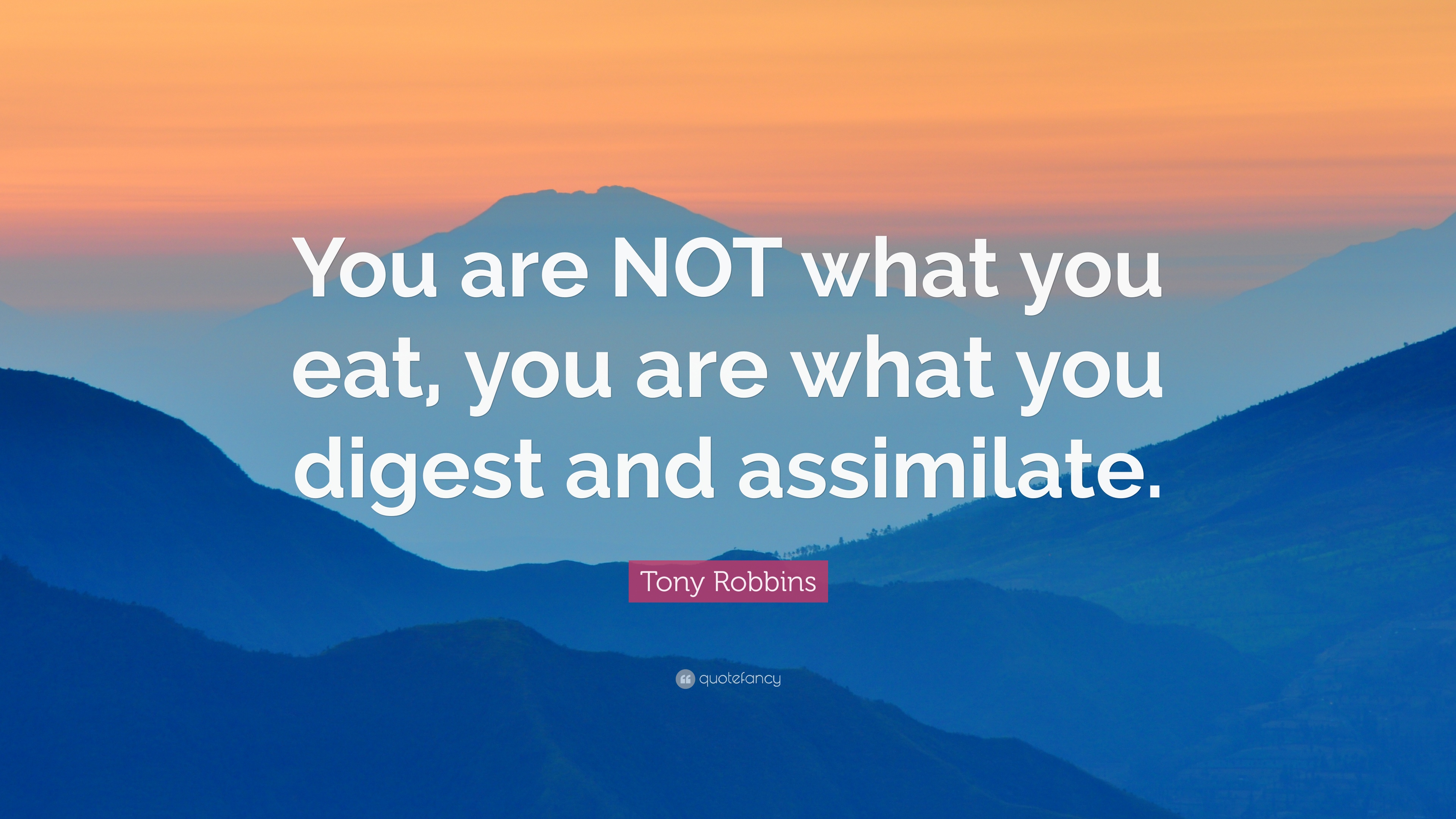 Tony Robbins Quote You Are Not What You Eat You Are What You