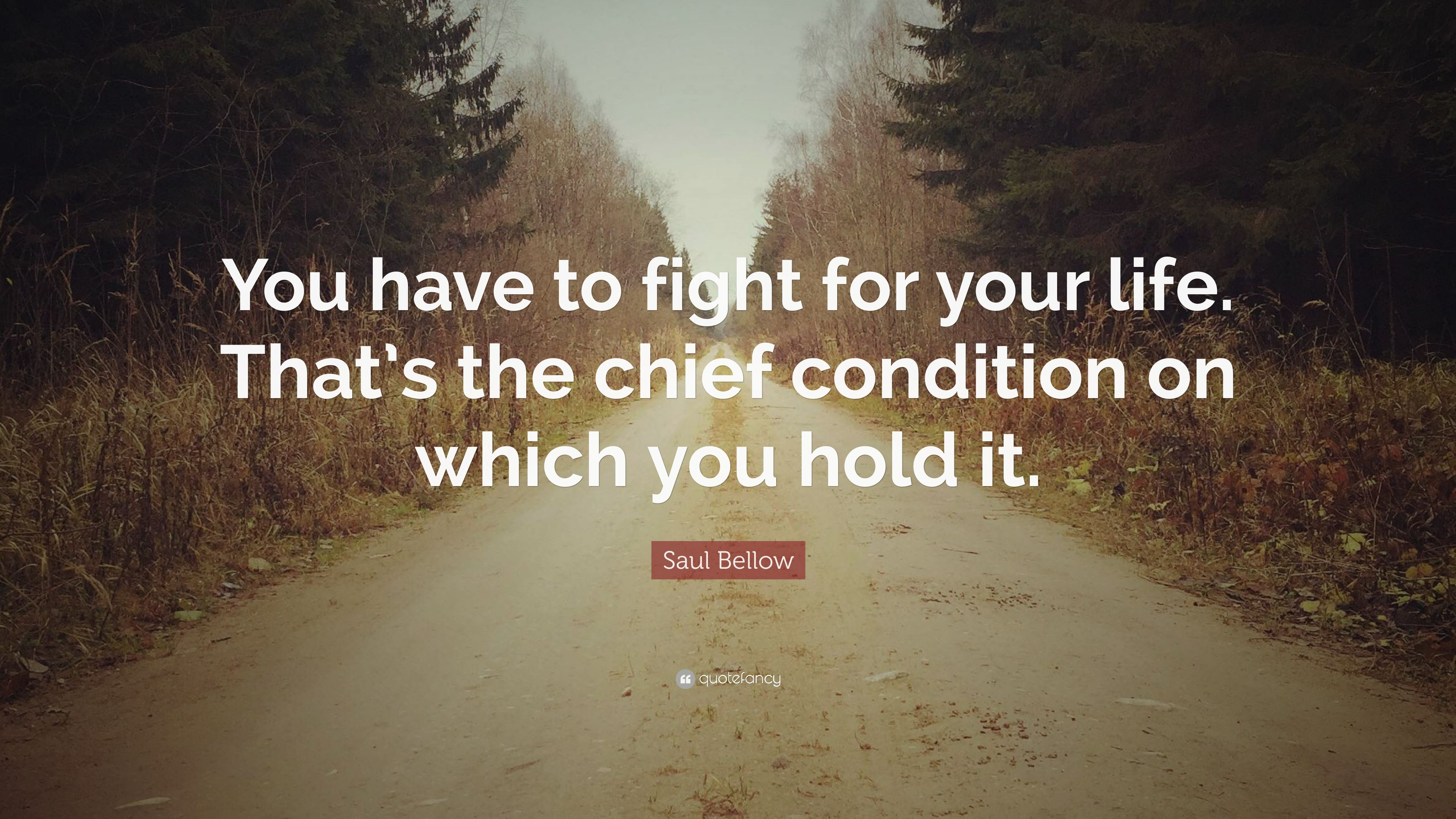 "Fight For Your Life Quotes Prepossessing Saul Bellow Quote ""You Have To Fight For Your Lifethat's The"