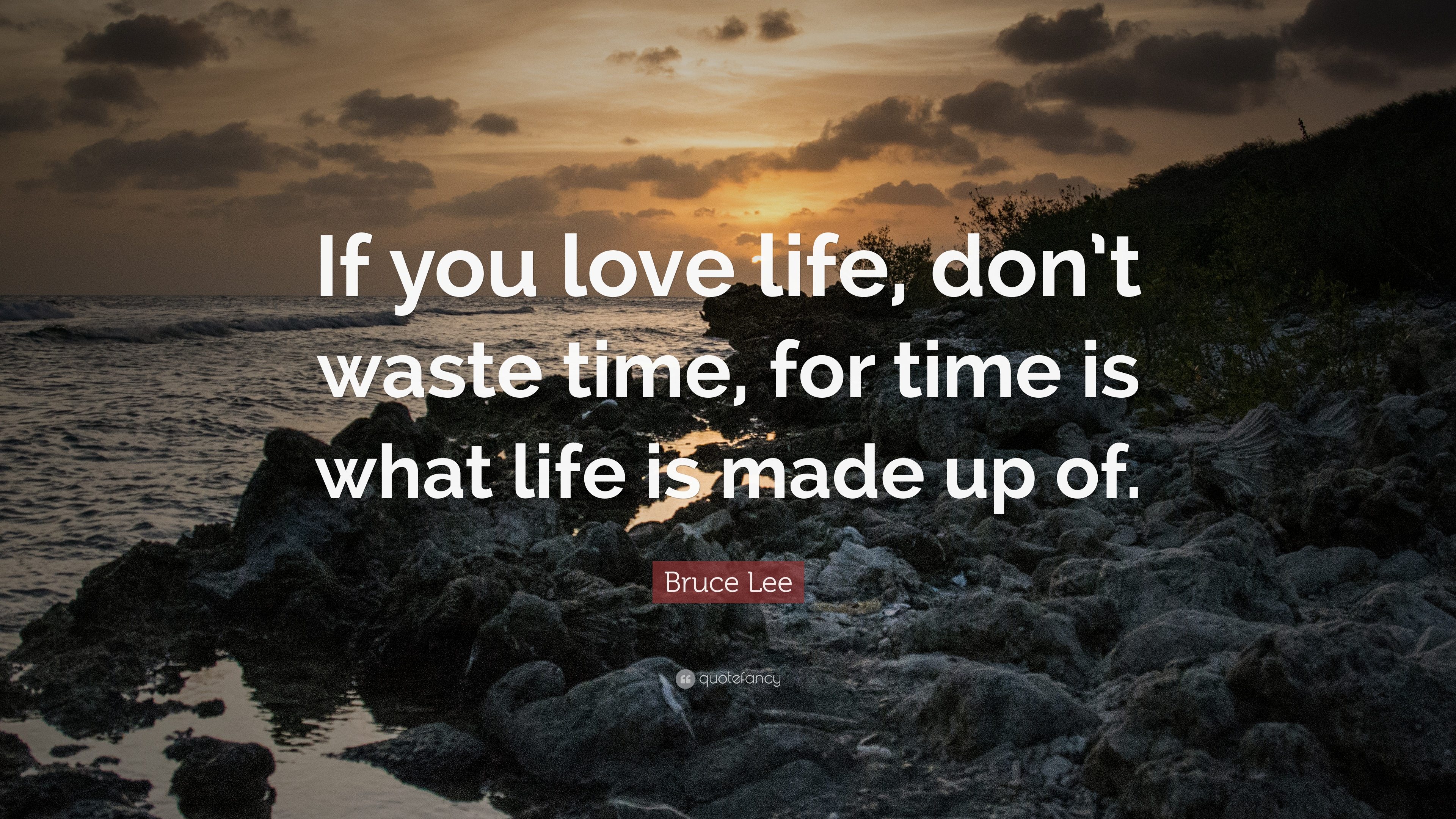 """Bruce Lee Quote: """"If you love life, don't waste time, for ..."""