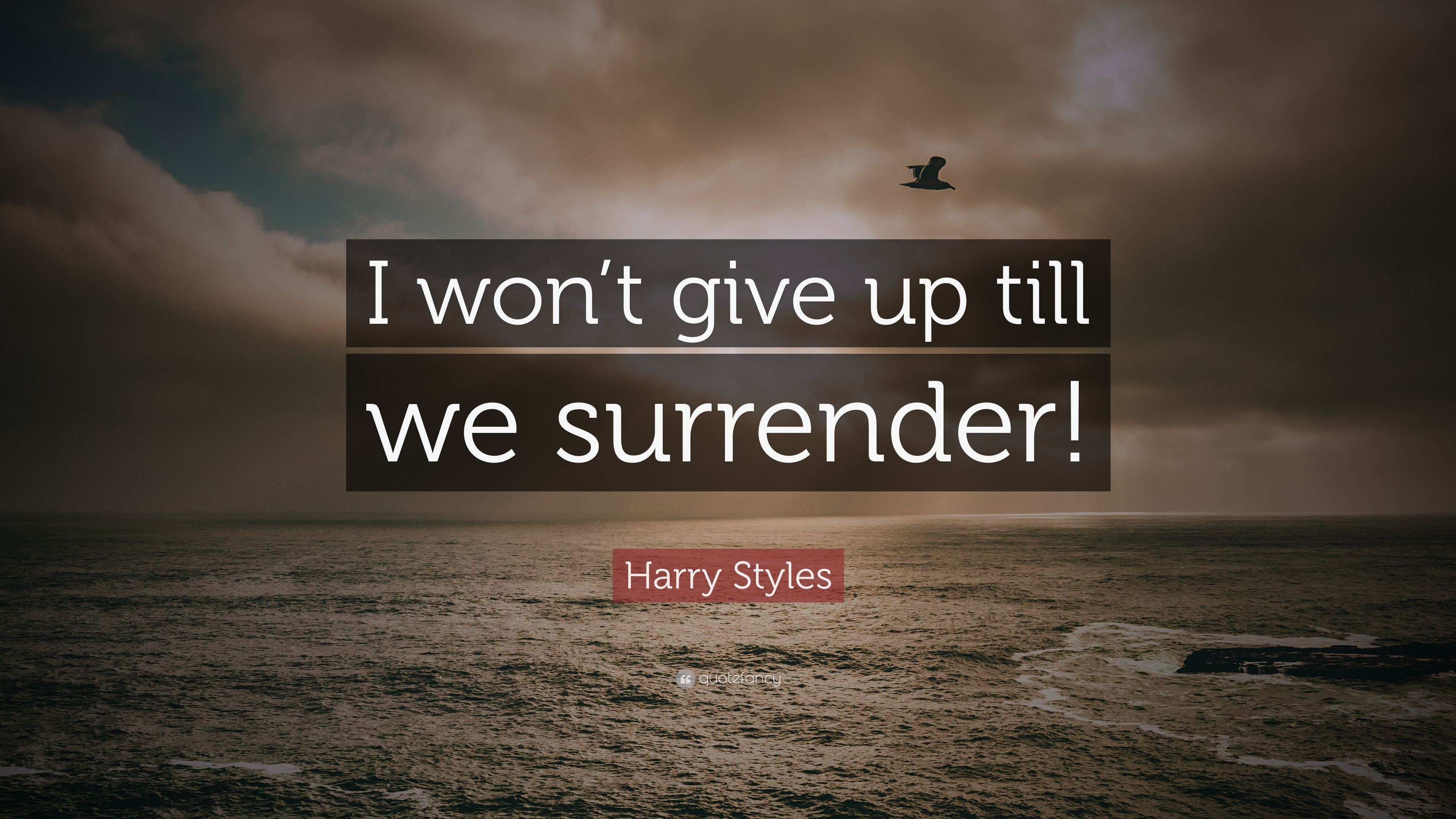 Harry Styles Quote I Wont Give Up Till We Surrender 10
