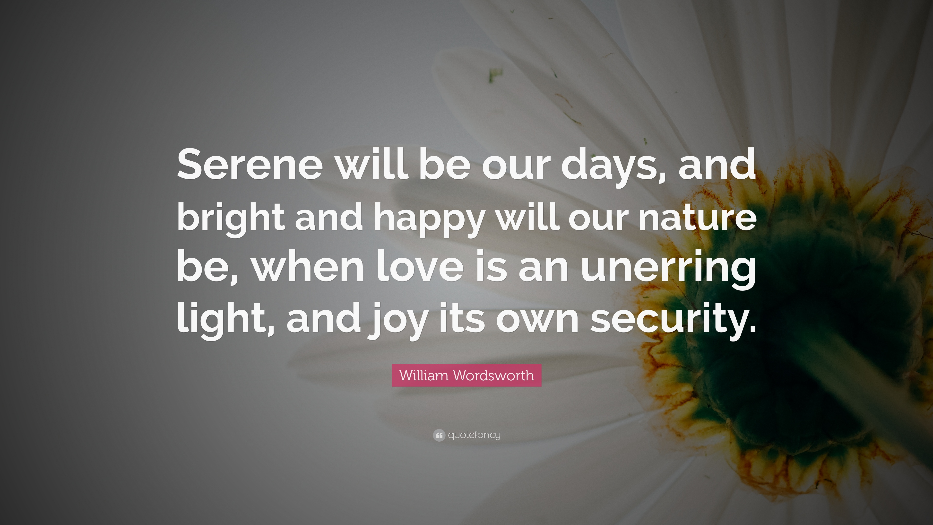 Where is love found in our days