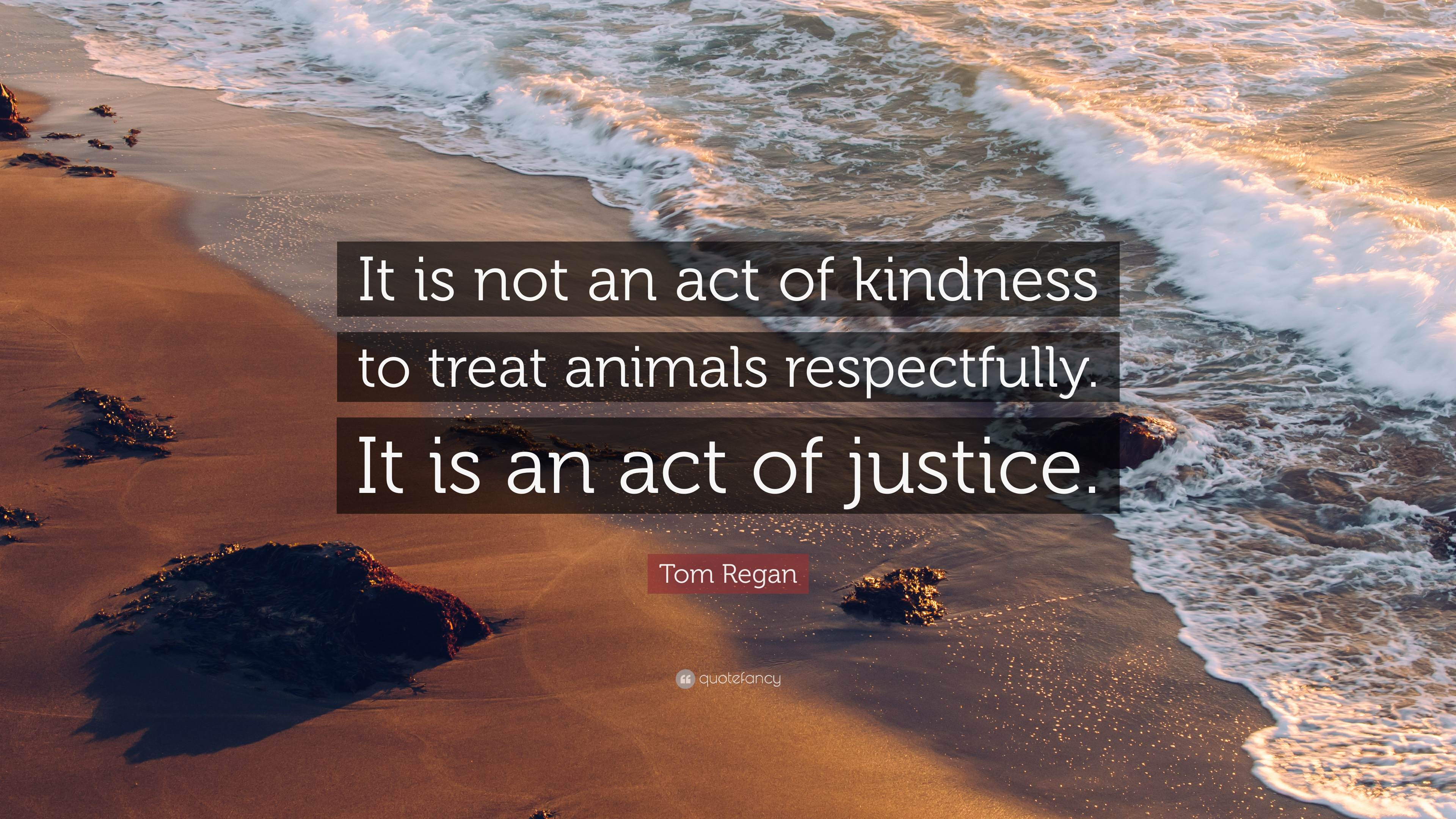 Tom Regan Quote It Is Not An Act Of Kindness To Treat Animals