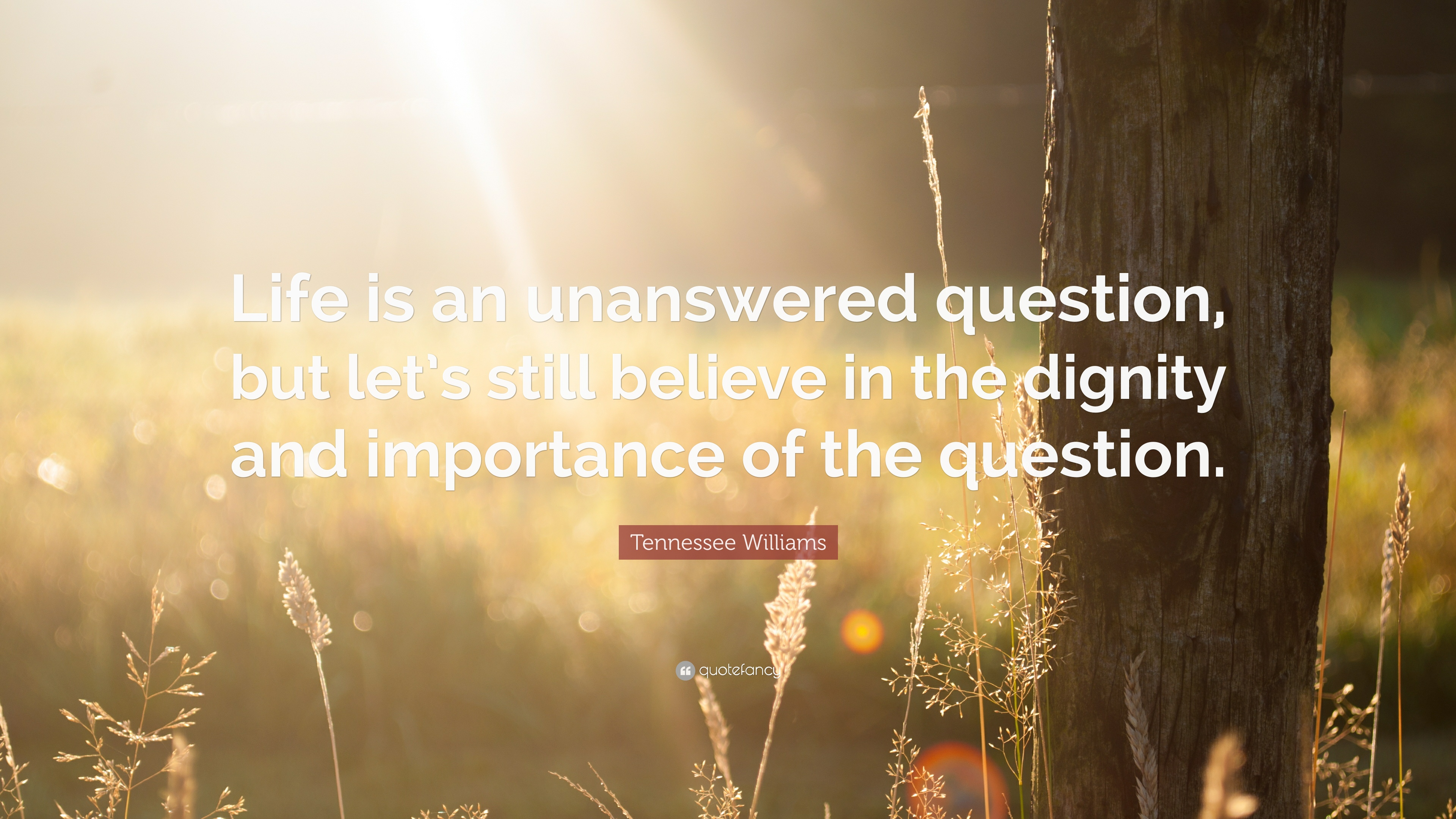 Tennessee Williams Quote Life Is An Unanswered Question But Let S