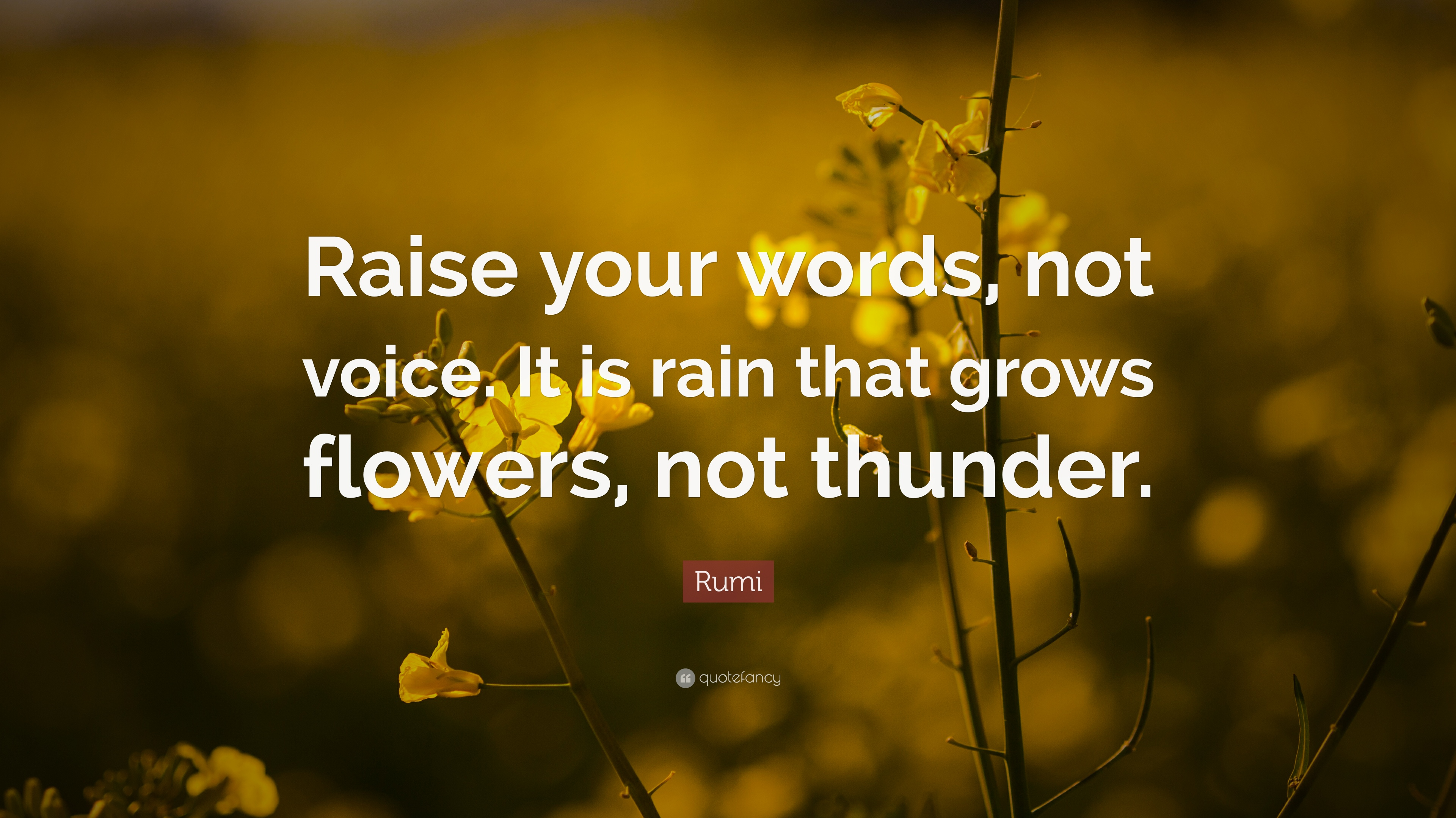 Rumi Quote Raise Your Words Not Voice It Is Rain That Grows