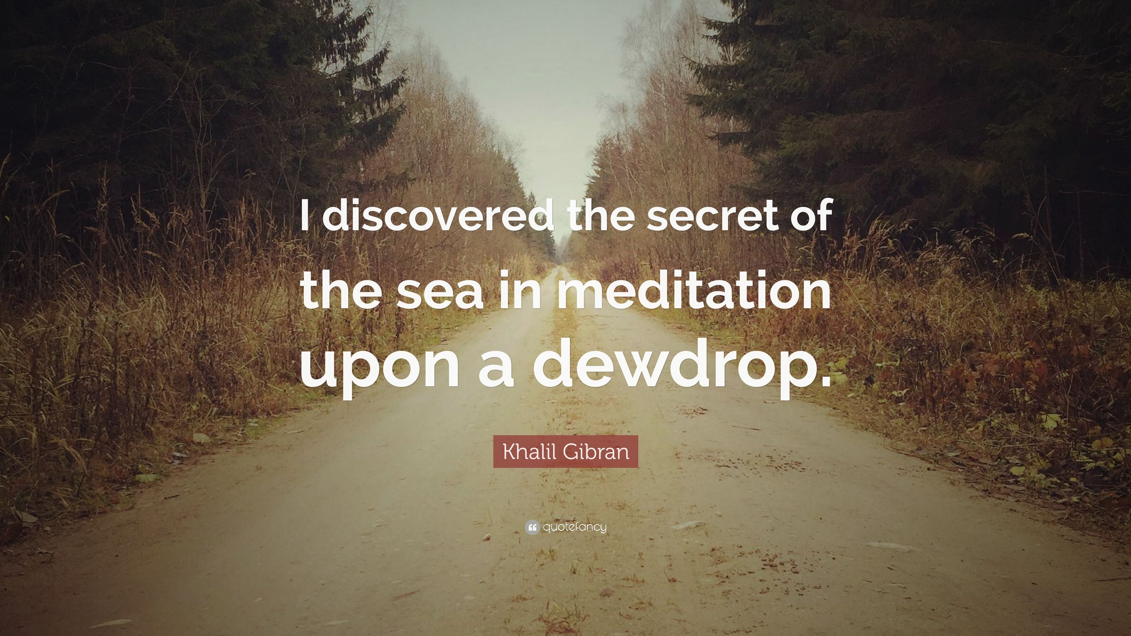 "Quotes About Discovery Inspired By The Ocean: Khalil Gibran Quote: ""I Discovered The Secret Of The Sea"