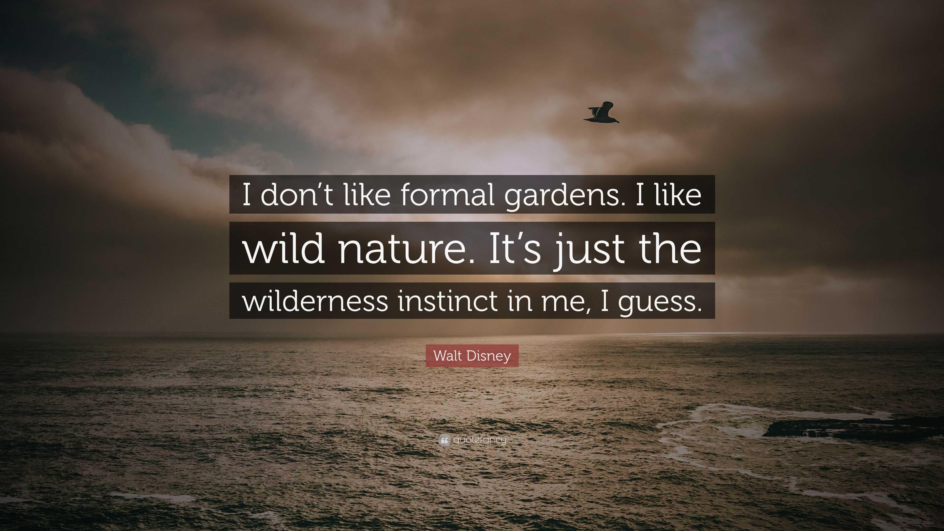 "Walt Disney Quote: ""I don\'t like formal gardens. I like wild nature ..."