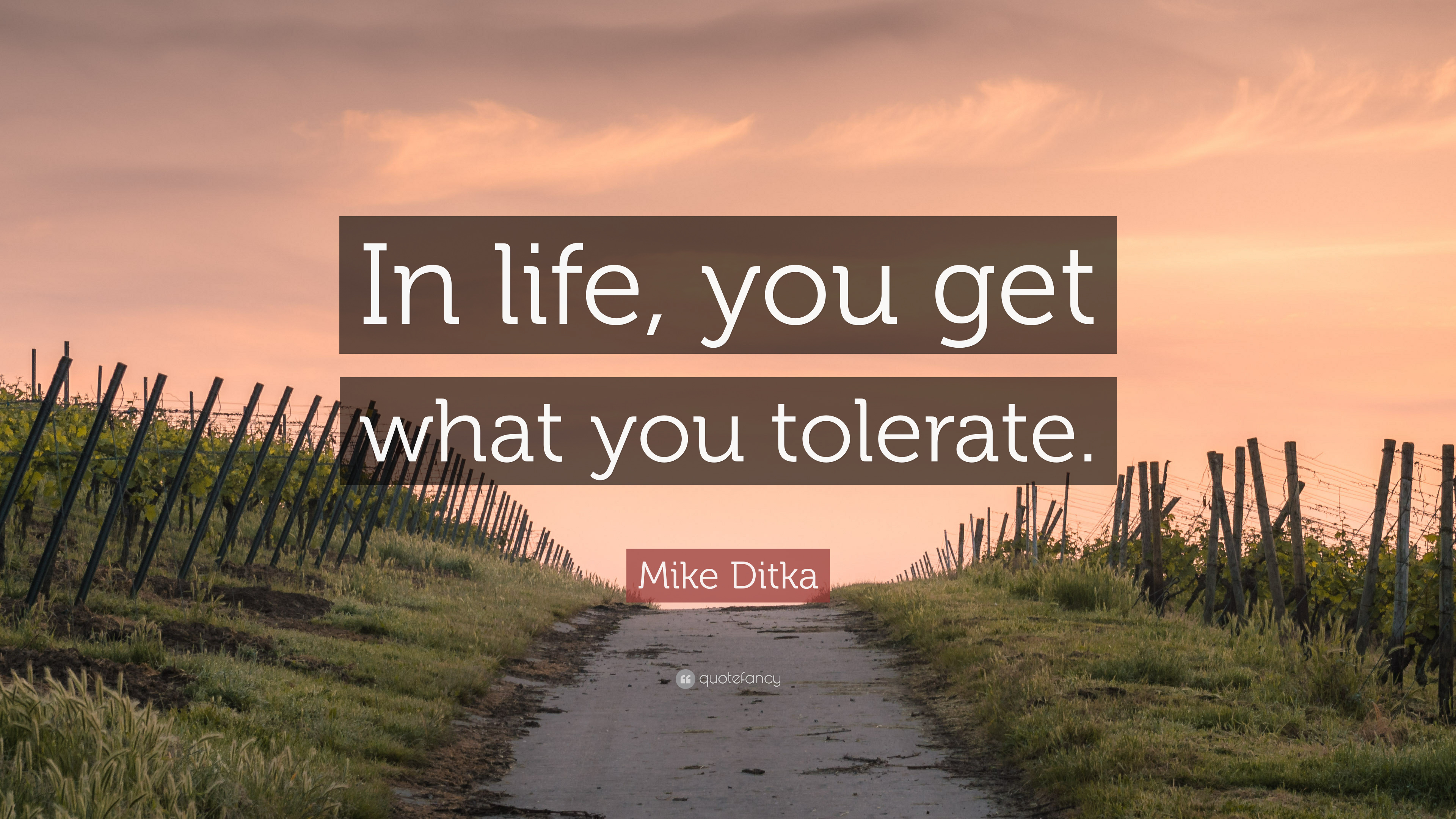 Mike Ditka Quote In Life You Get What You Tolerate 7