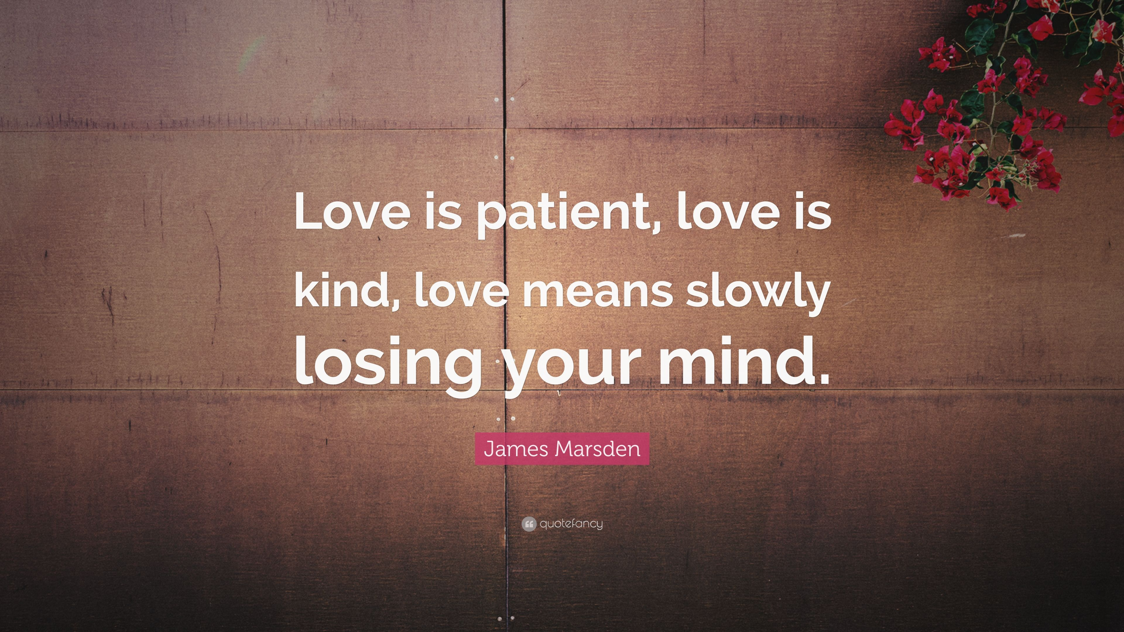 "James Marsden Quote: ""Love Is Patient, Love Is Kind, Love"