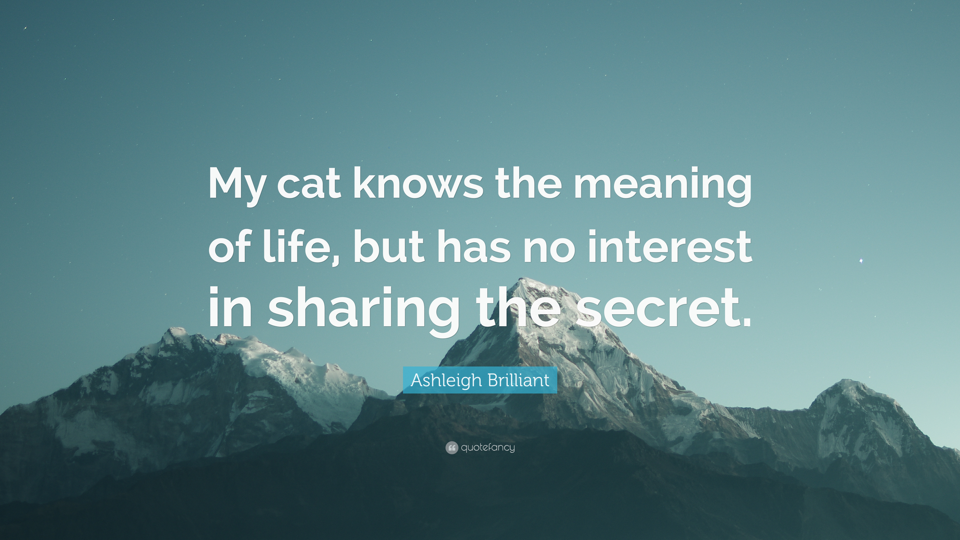 Ashleigh Brilliant Quote My Cat Knows The Meaning Of Life But Has