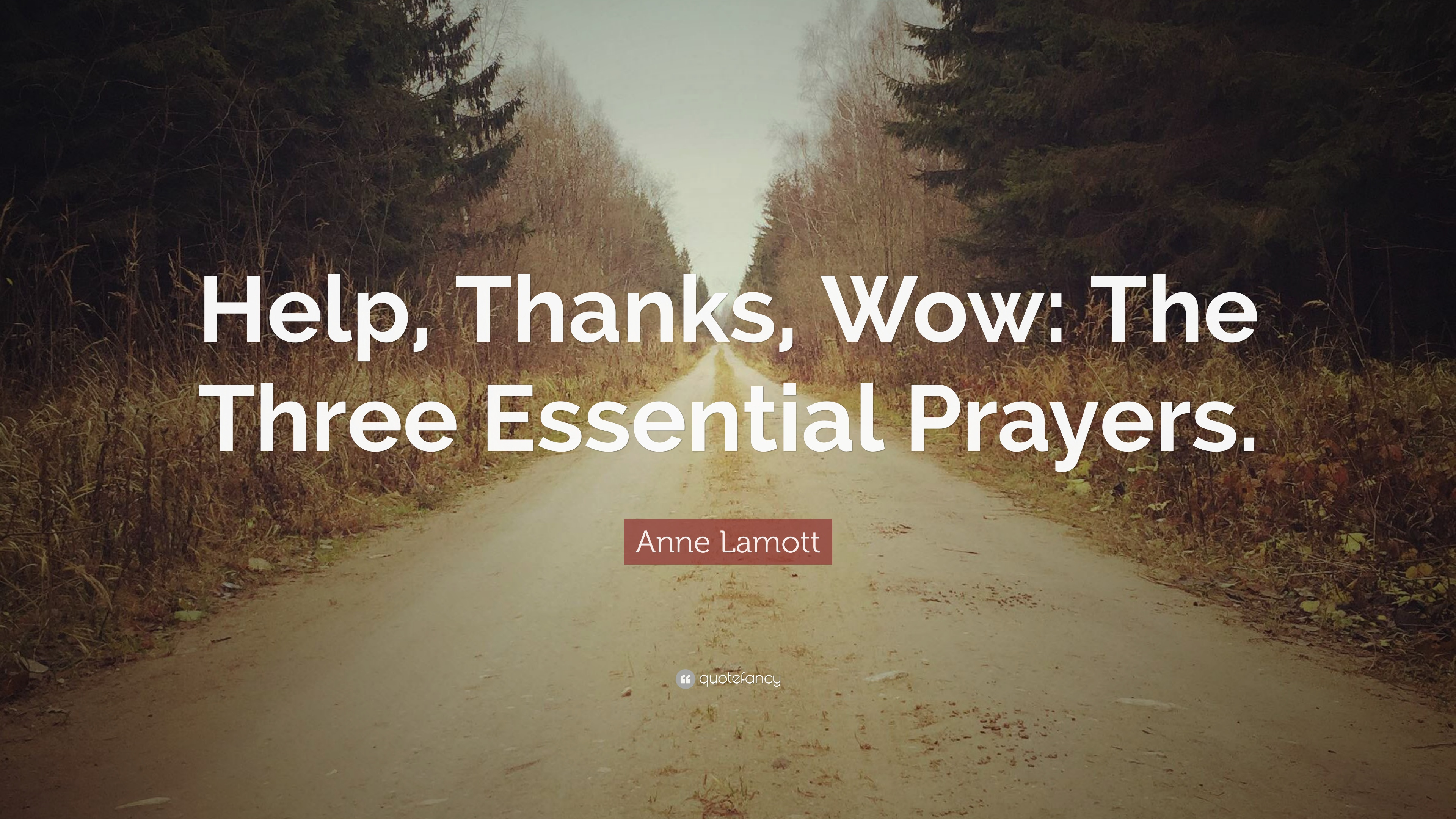 """Anne Lamott Quote: """"Help, Thanks, Wow: The Three Essential Prayers ..."""