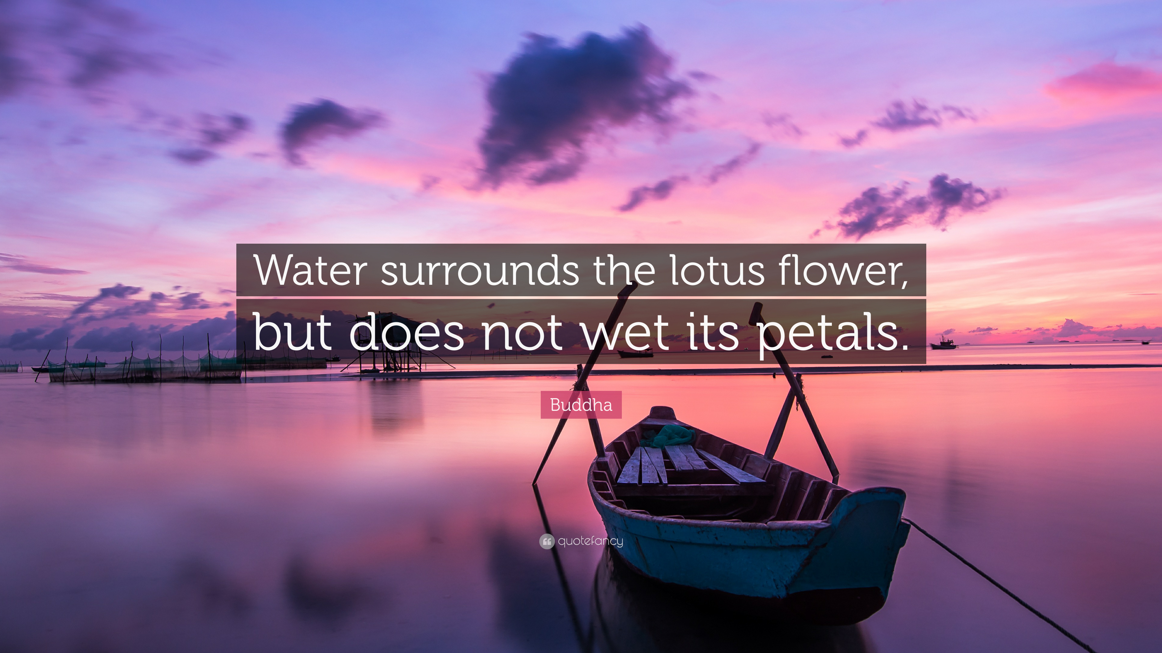 Buddha Quote Water Surrounds The Lotus Flower But Does Not Wet