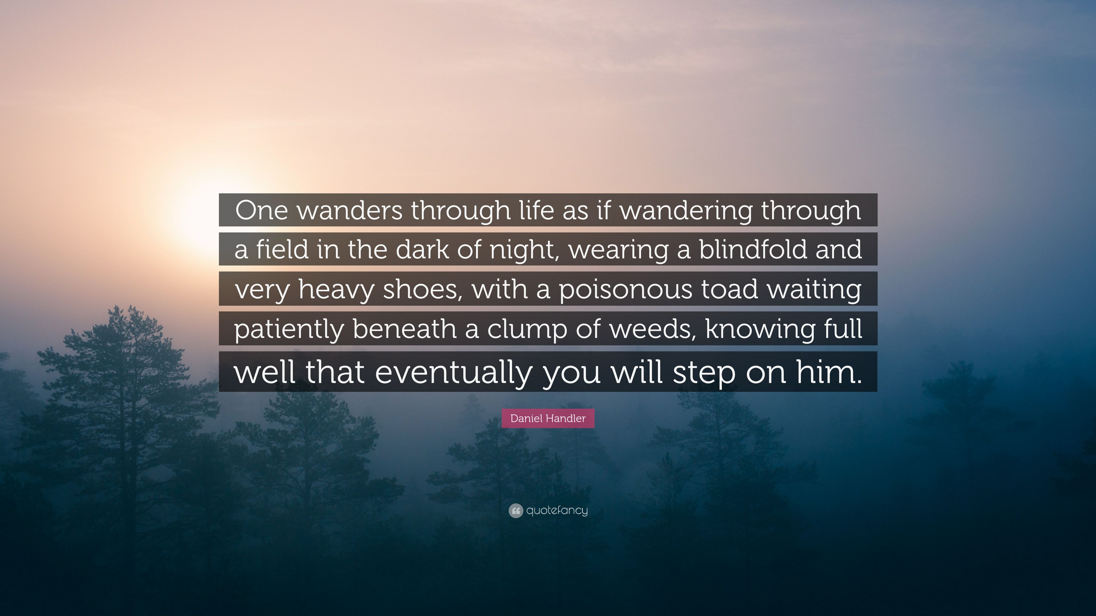Daniel Handler Quote: U201cOne Wanders Through Life As If Wandering Through A  Field In