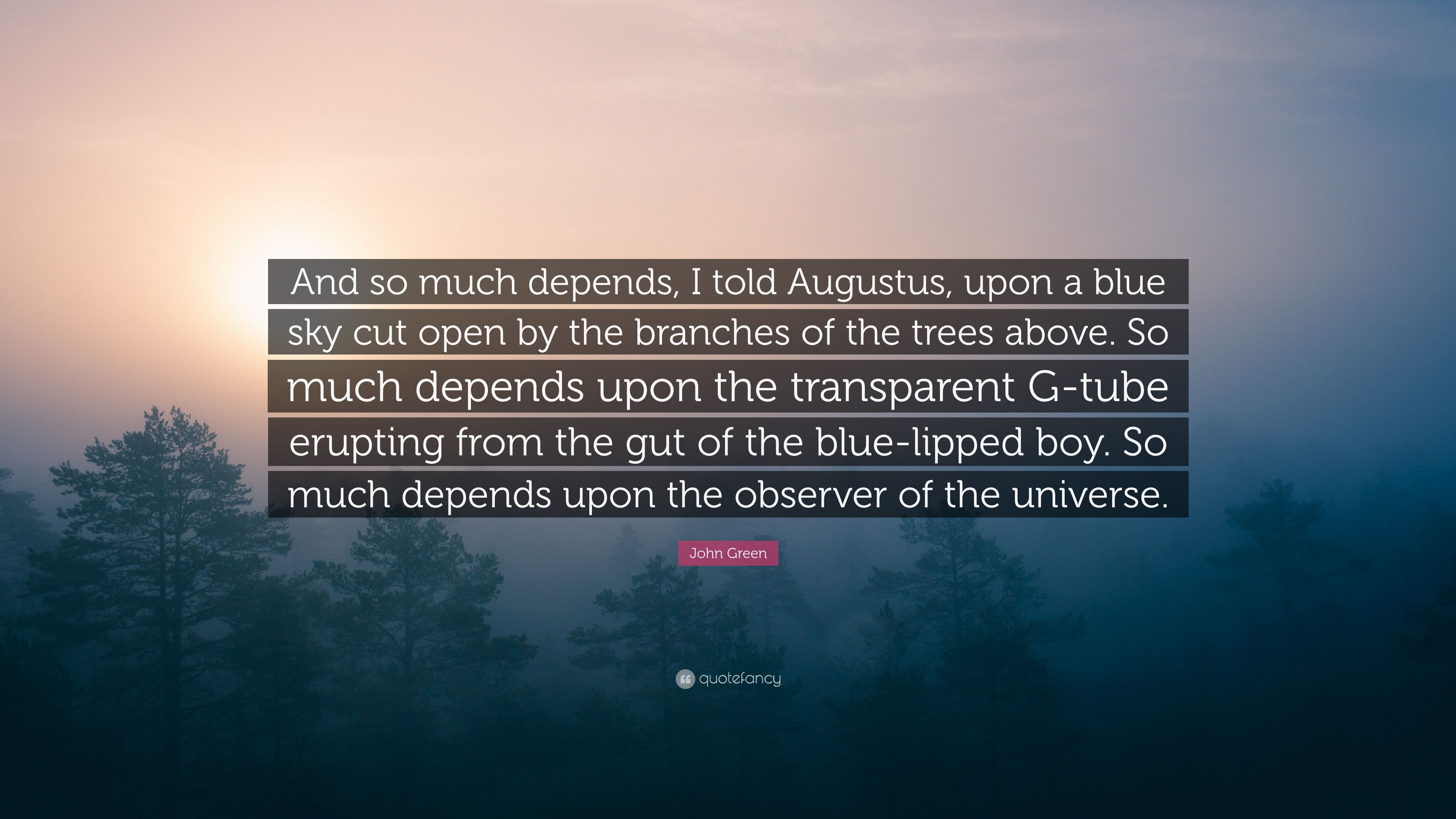 John Green Quote And So Much Depends I Told Augustus Upon A Blue Sky Cut Open By The Branches Of The Trees Above So Much Depends Upon 7 Wallpapers Quotefancy