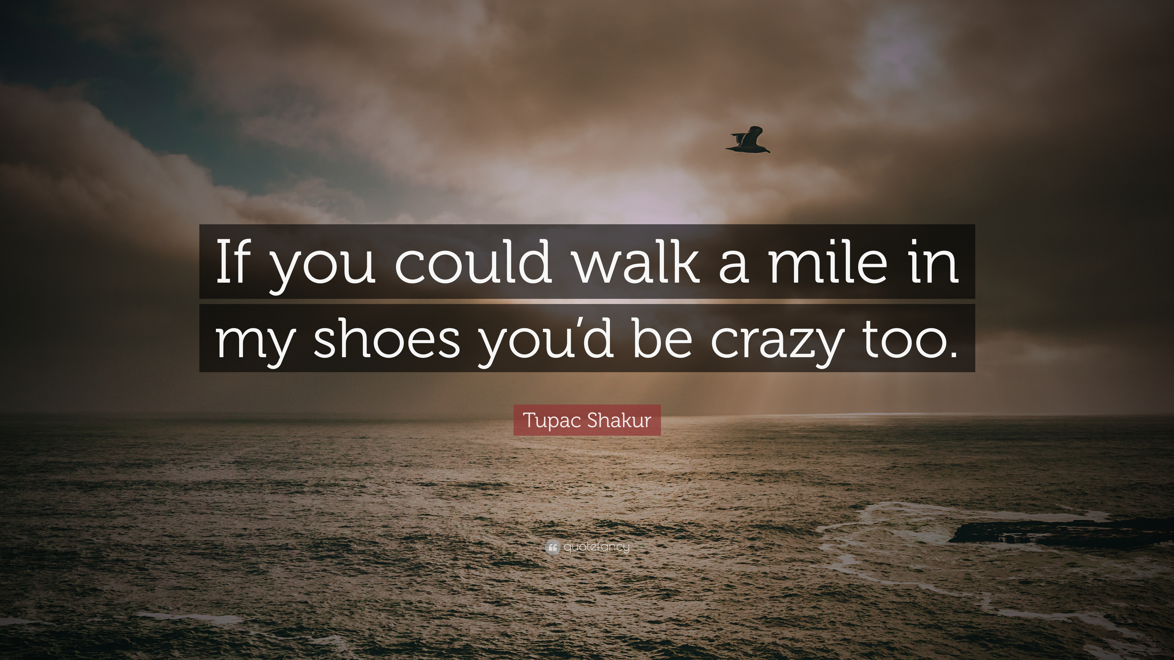 Tupac Shakur Quote If You Could Walk A Mile In My Shoes Youd Be