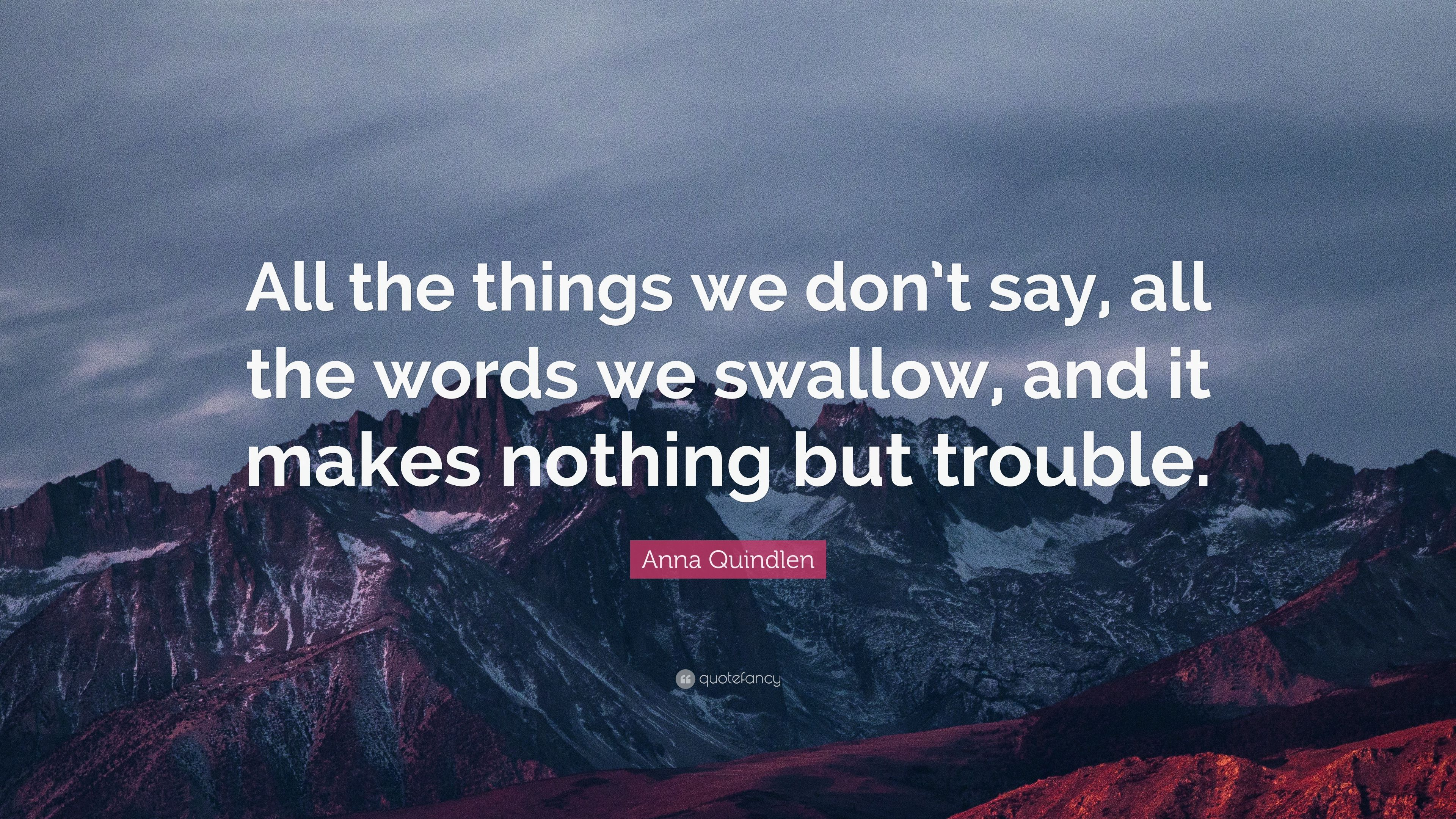"""Anna Quindlen Quote: """"All The Things We Don't Say, All The"""