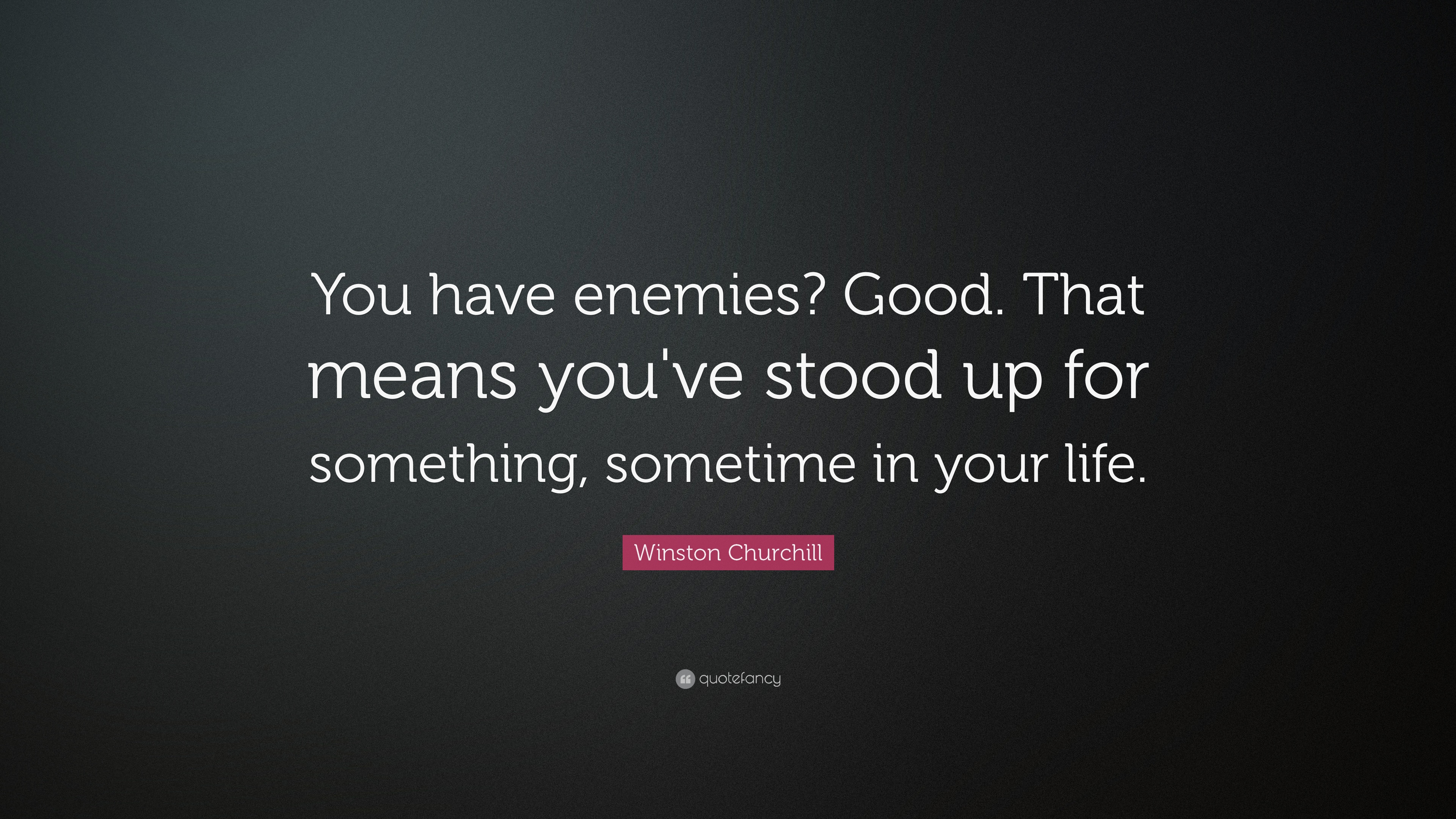 Winston Churchill Quote You Have Enemies Good That Means Youve