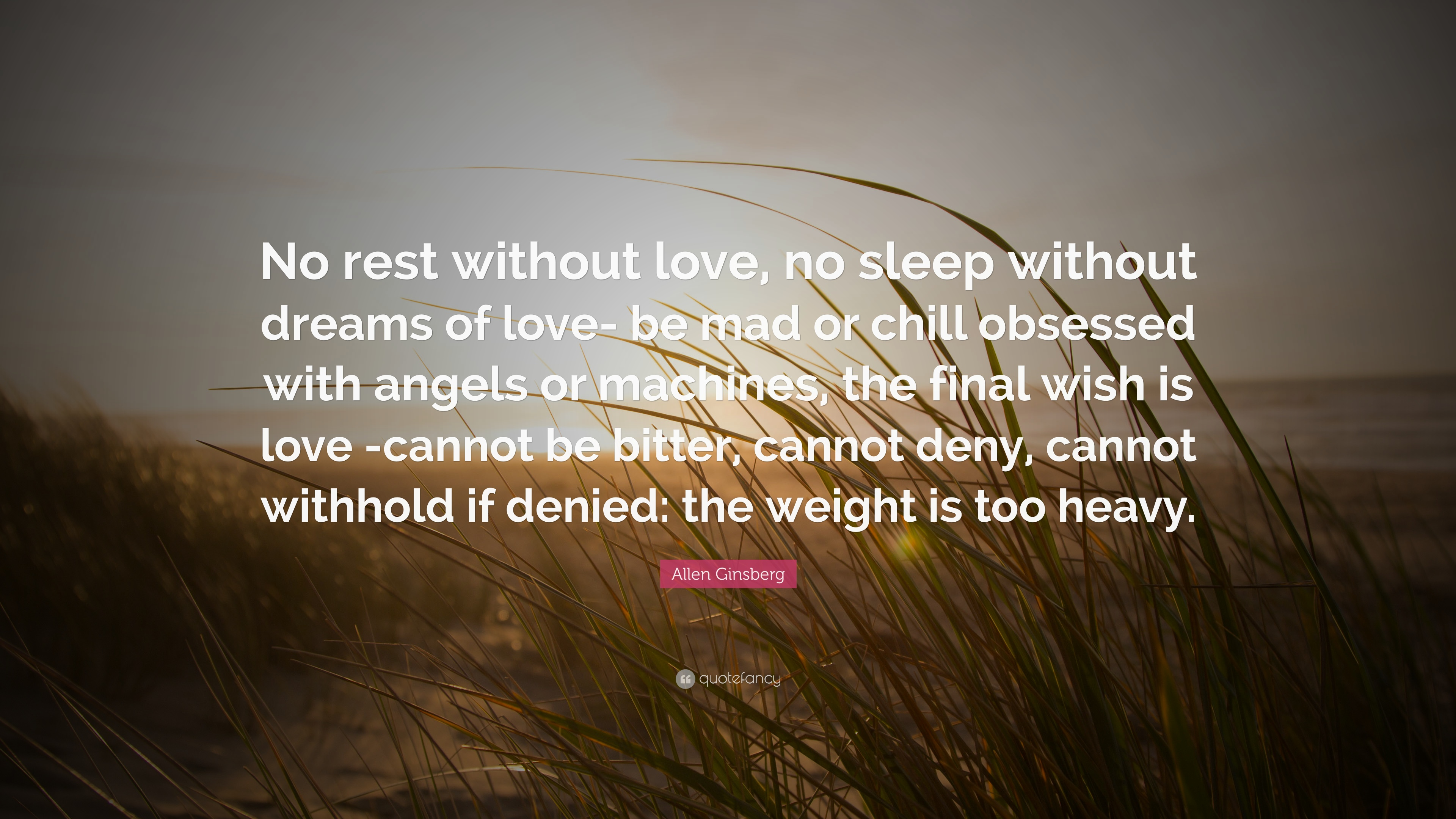 """Mad Love Quotes Allen Ginsberg Quote """"No Rest Without Love No Sleep Without"""