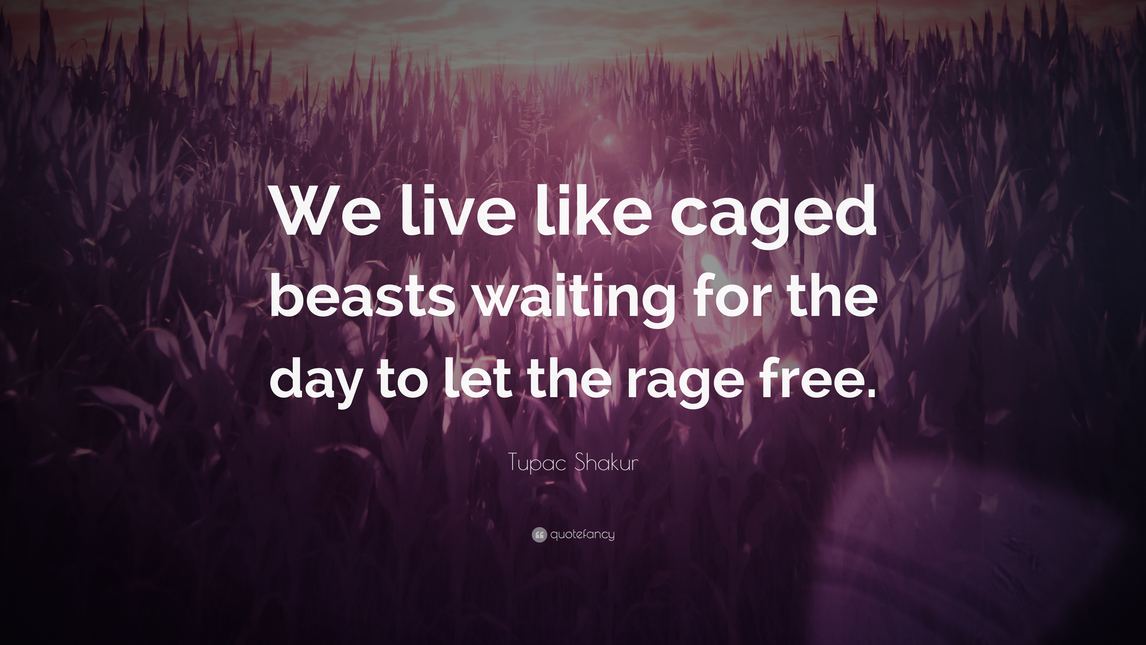 Tupac Shakur Quote We Live Like Caged Beasts Waiting For The Day
