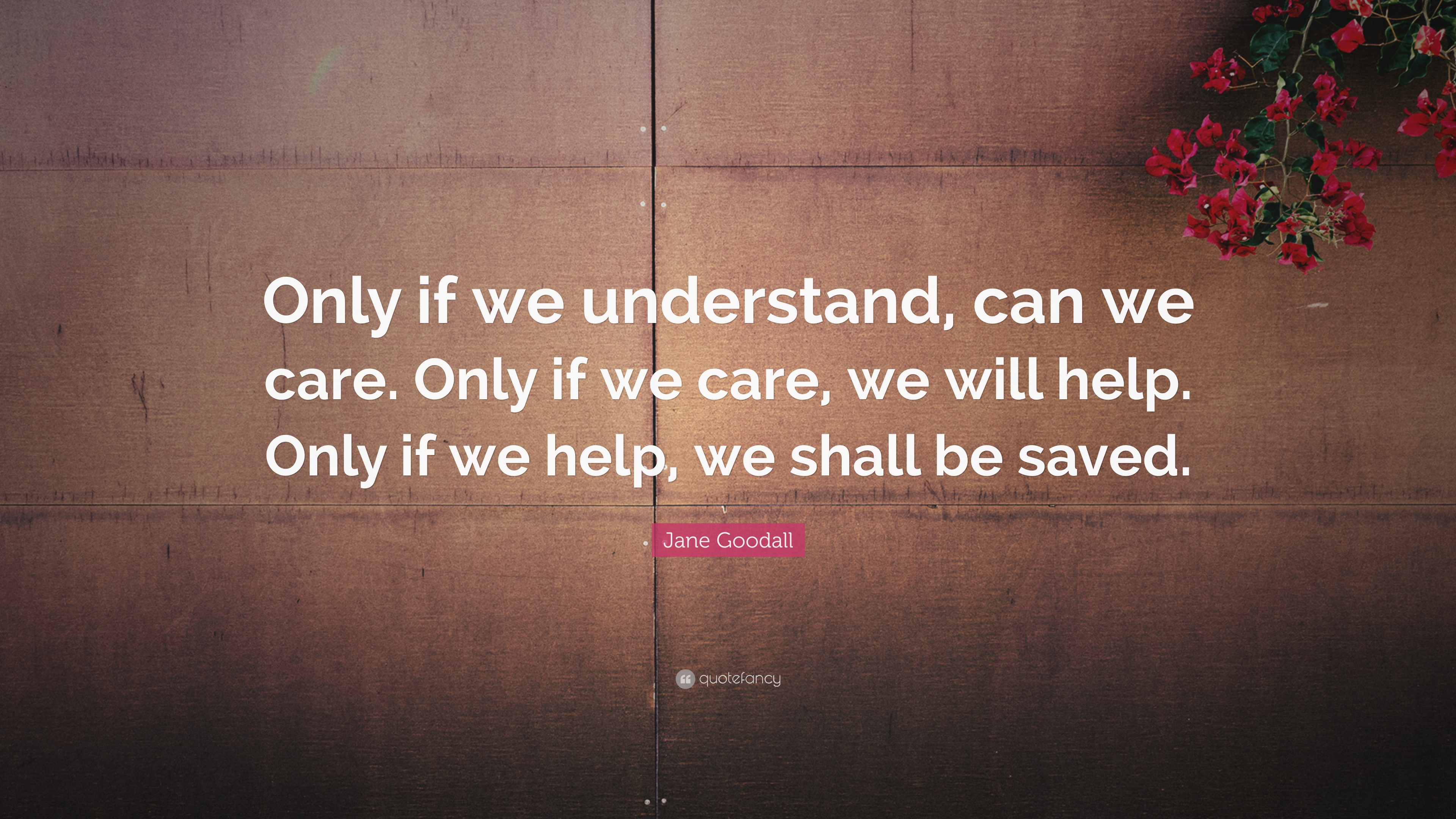 """Jane Goodall Quote: """"Only if we understand, can we care"""