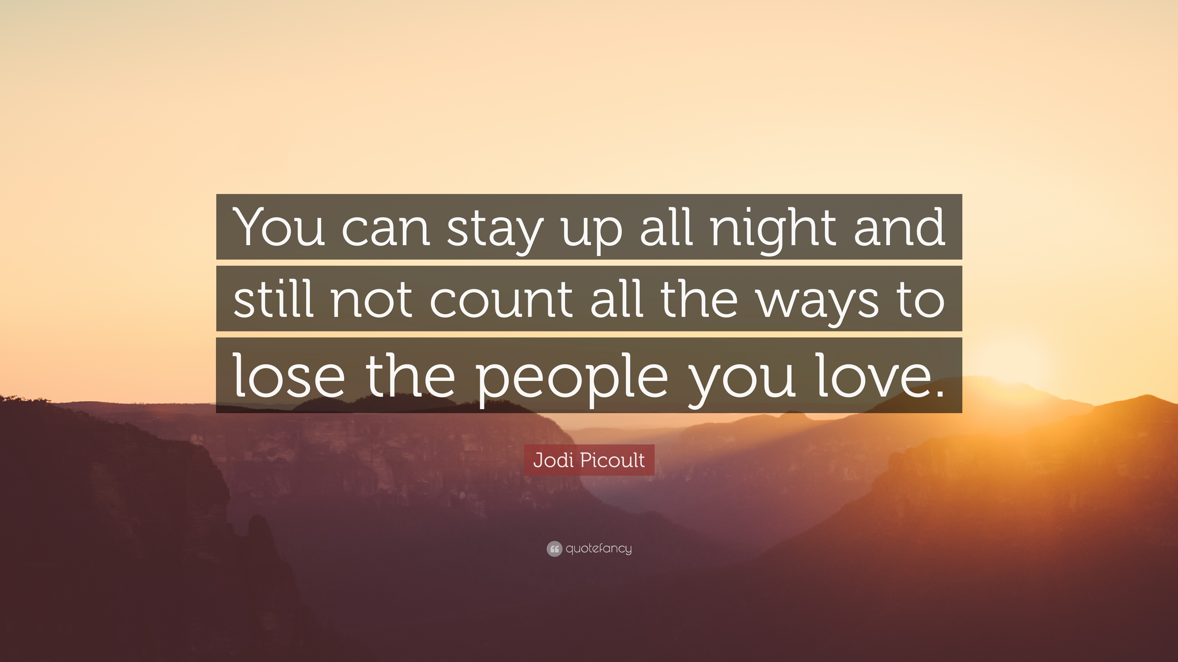 Jodi Picoult Quote You Can Stay Up All Night And Still Not Count
