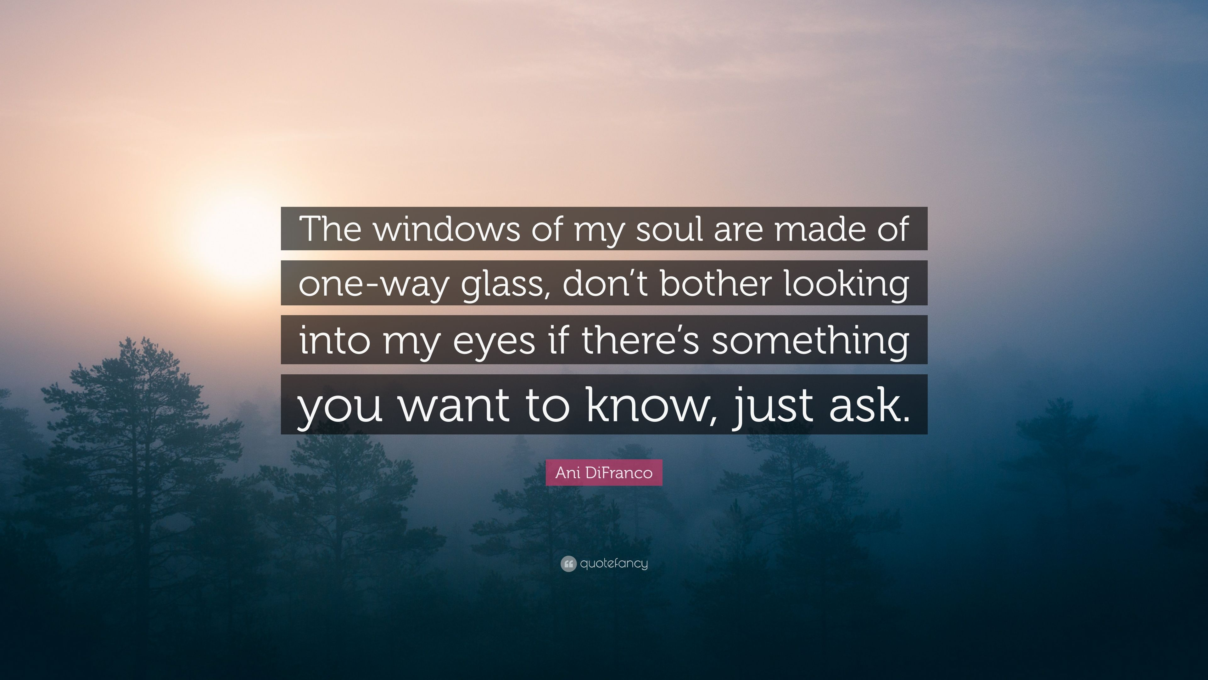 """Ani DiFranco Quote: """"The Windows Of My Soul Are Made Of"""
