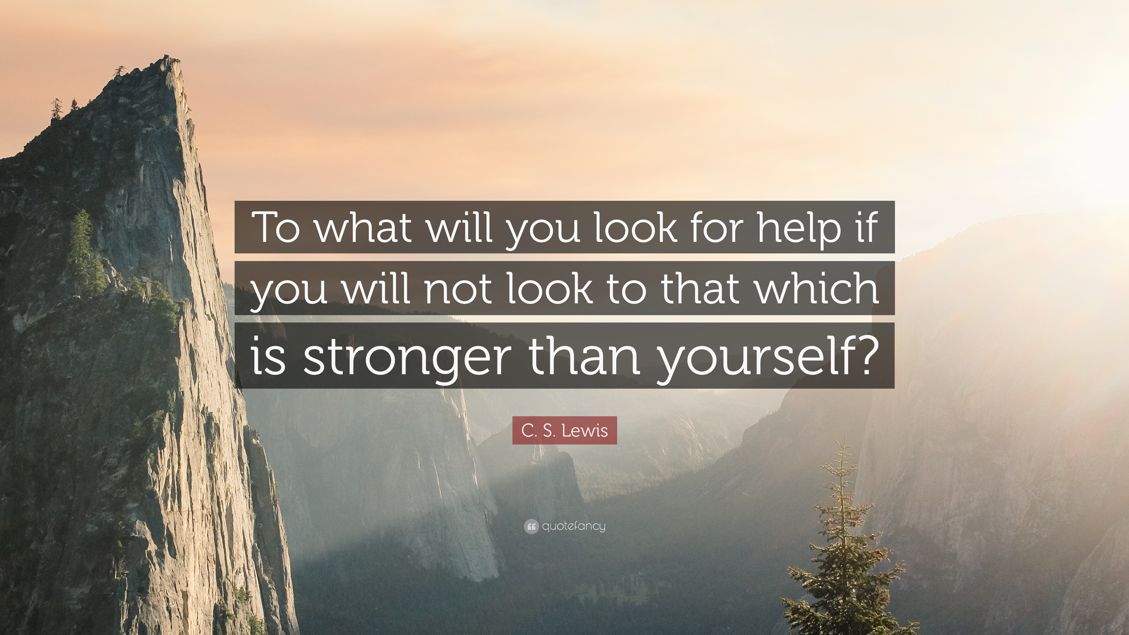 """C  S  Lewis Quote: """"To what will you look for help if you"""