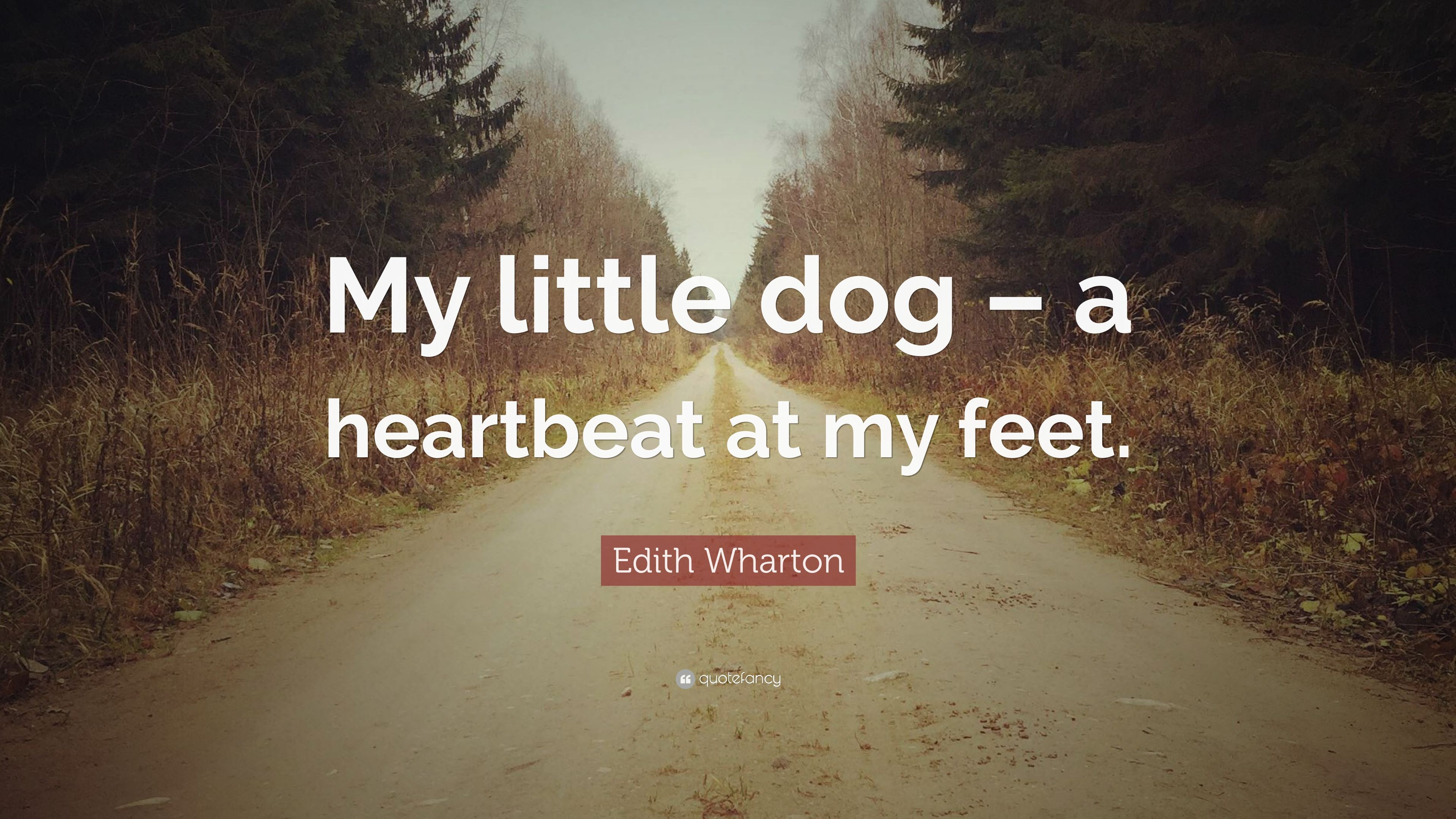 Edith Wharton Quote My Little Dog A Heartbeat At My Feet 7