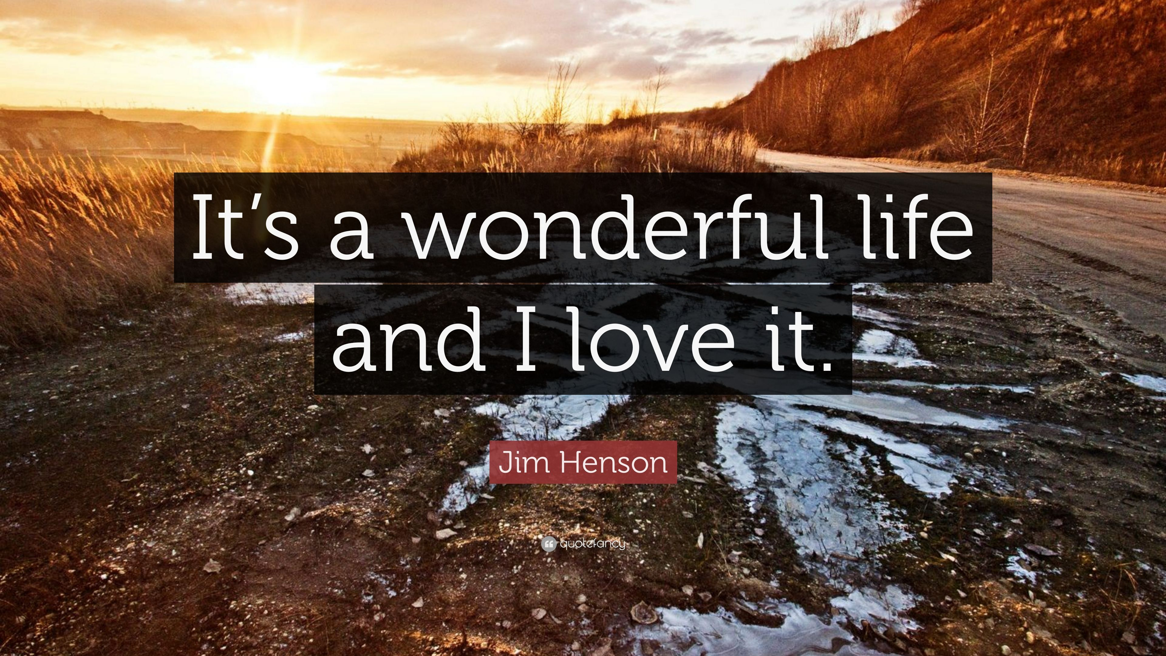 Jim Henson Quote It S A Wonderful Life And I Love It 6