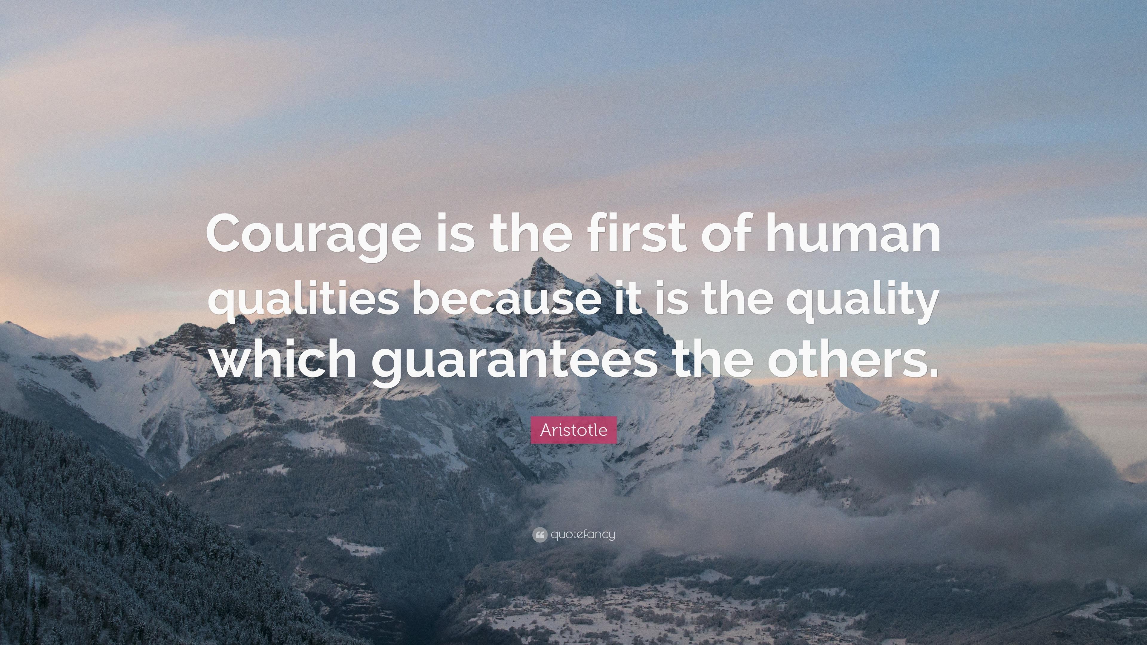 Aristotle Quotes Quality