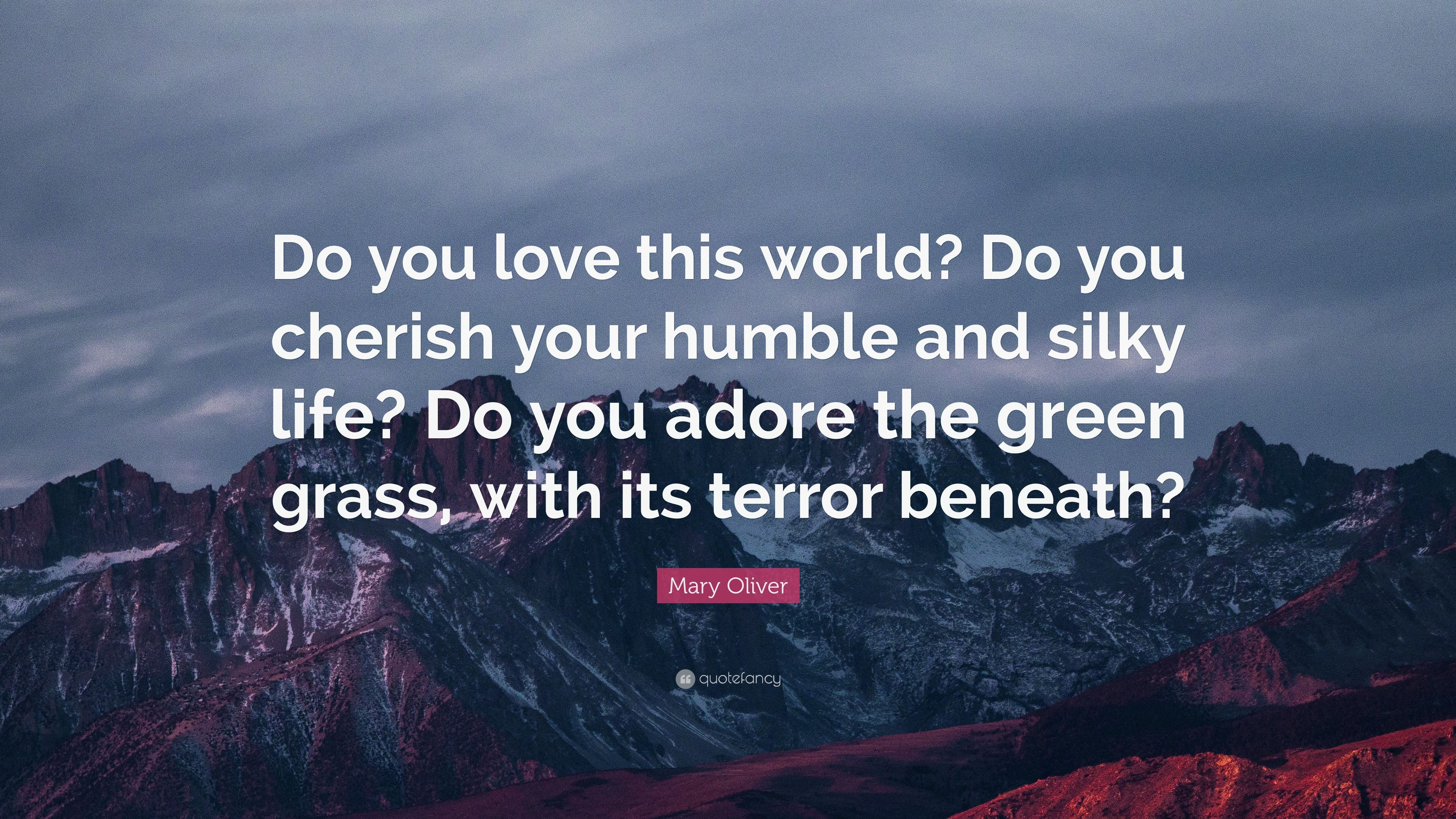 """Cherish Your Life Quotes Mary Oliver Quote """"Do You Love This World Do You Cherish Your"""
