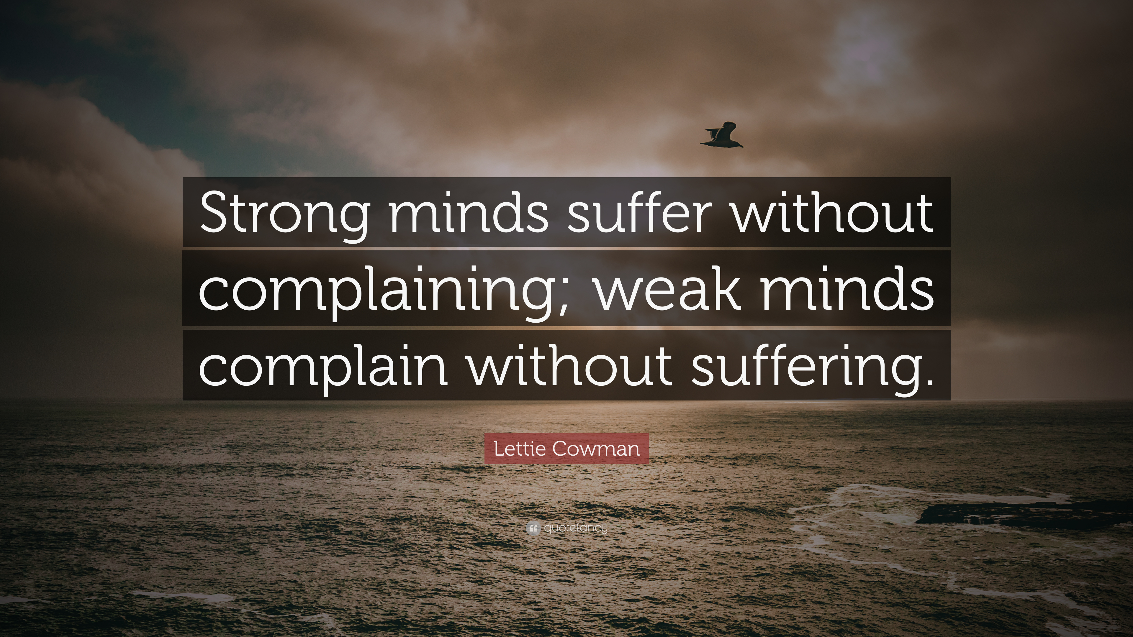 Learn These Weak Minded Quotes