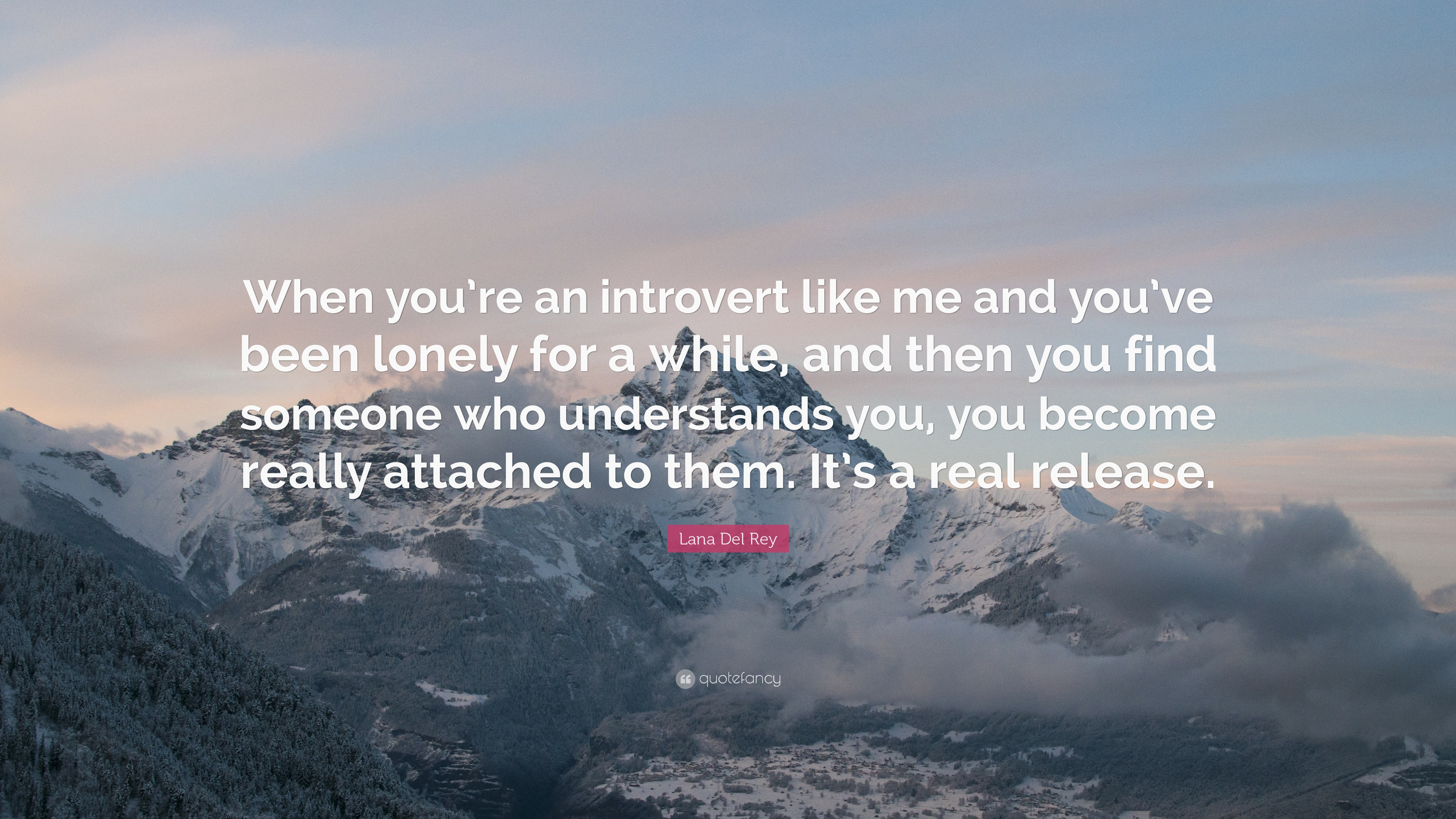 what is an introvert like