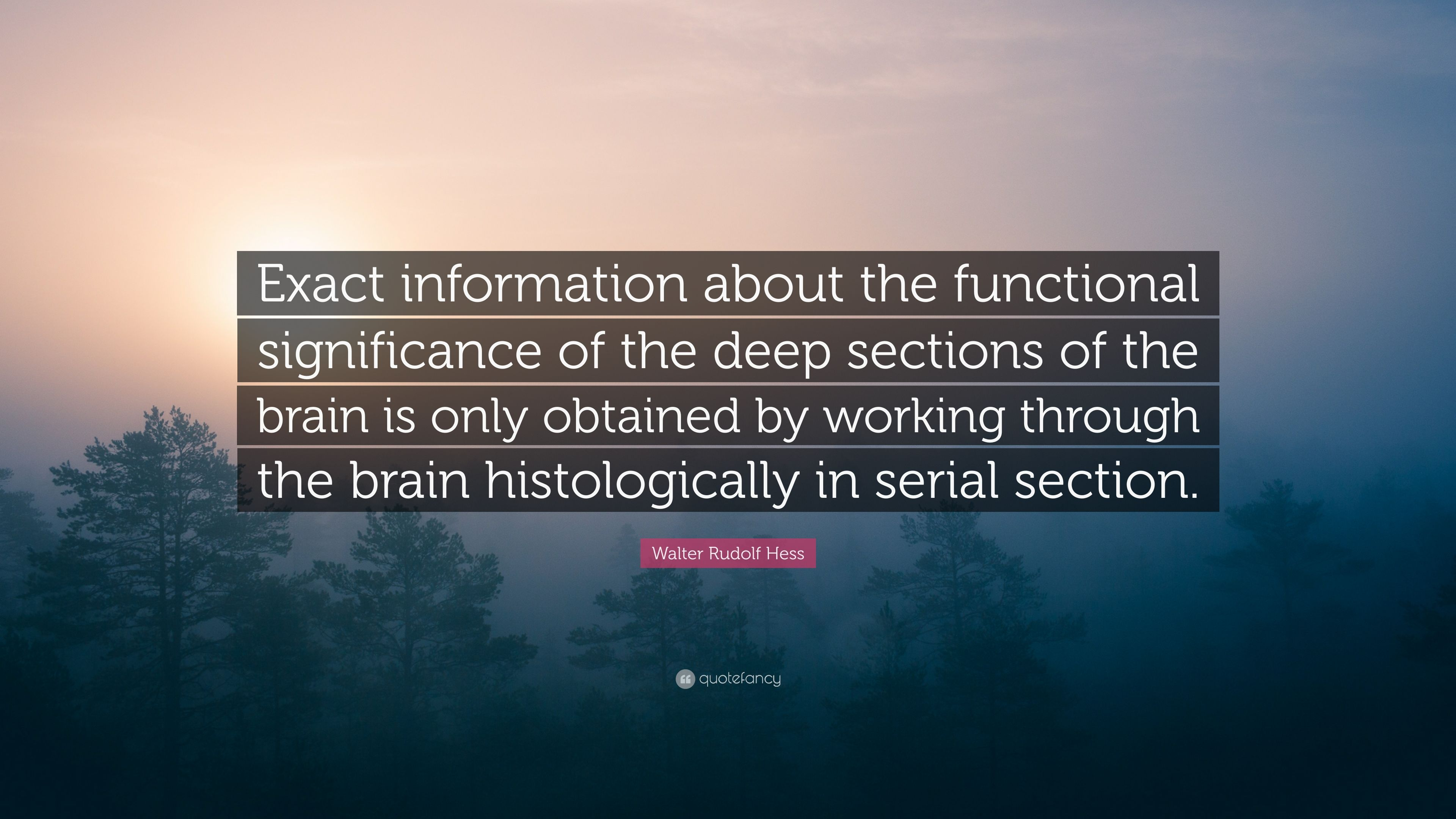 Walter Rudolf Hess Quote Exact Information About The Functional