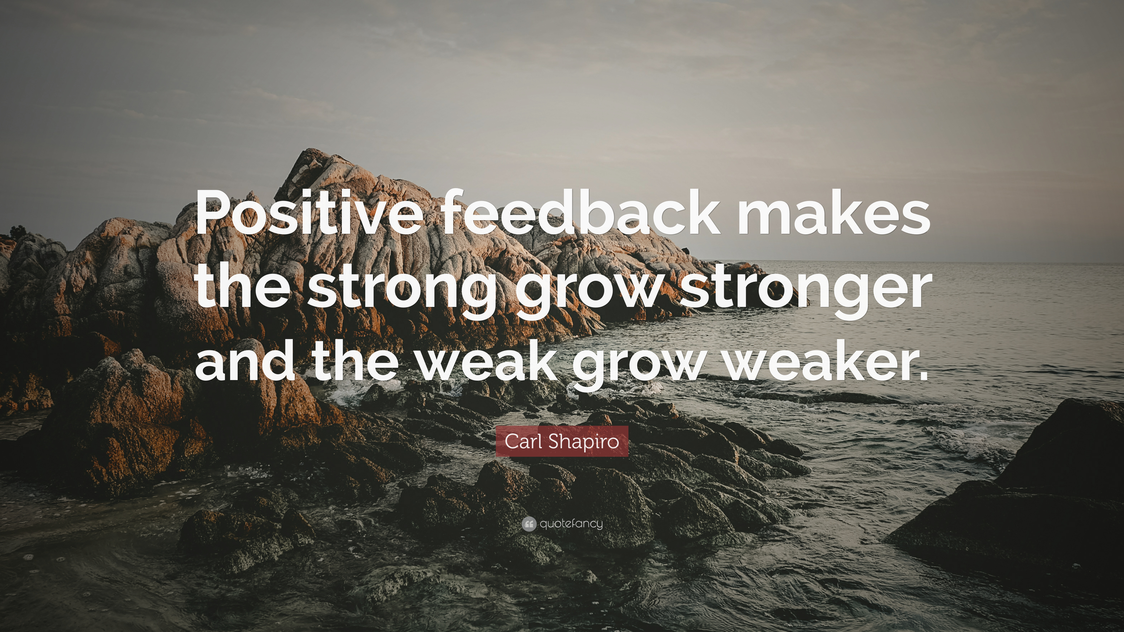 """Carl Shapiro Quote: """"Positive feedback makes the strong grow"""